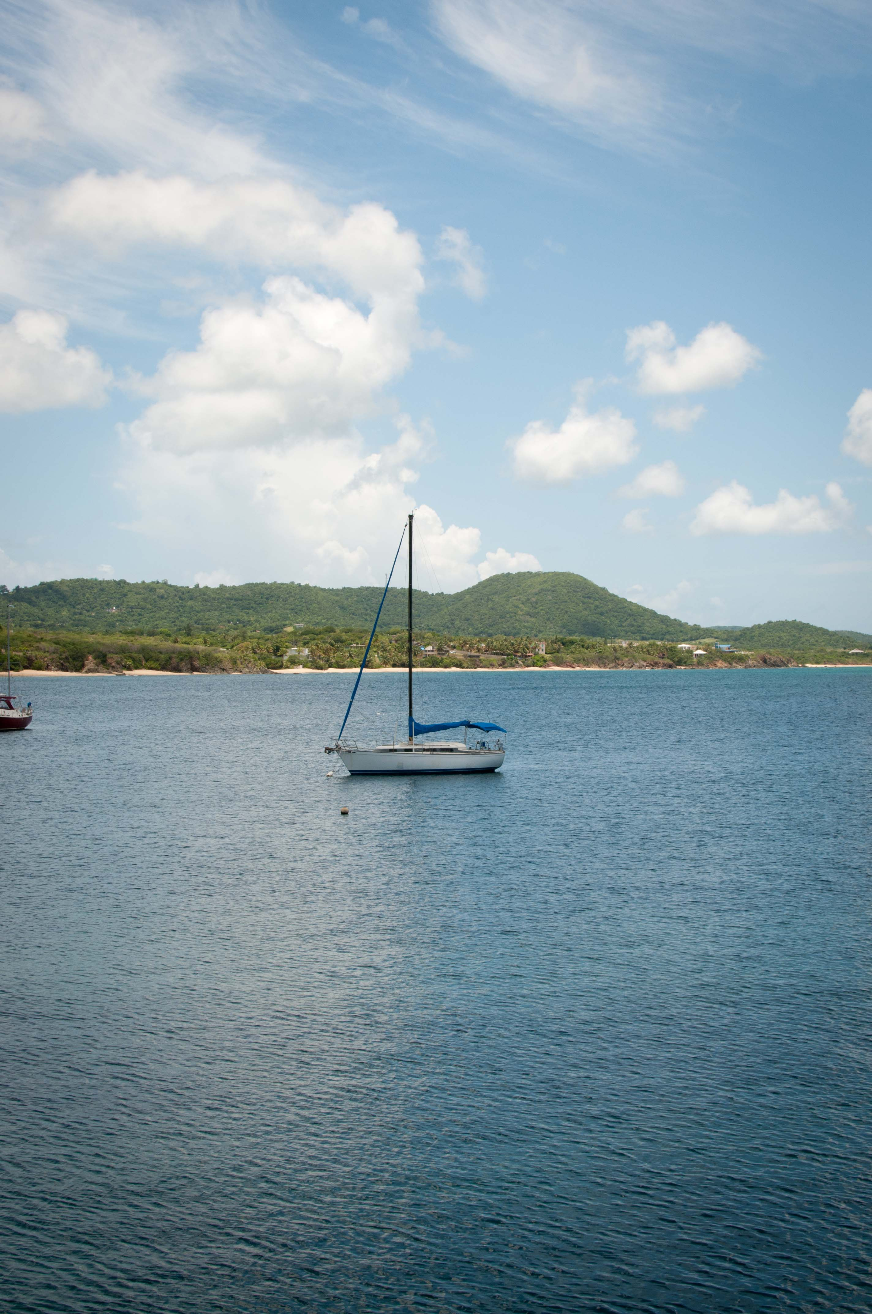vieques small-54