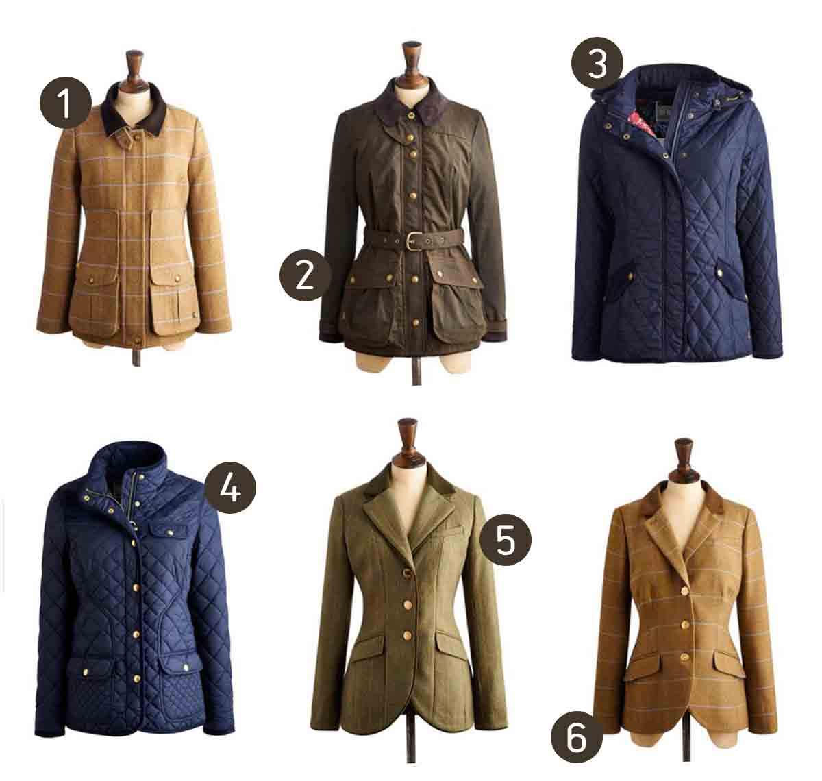 joules fall jackets