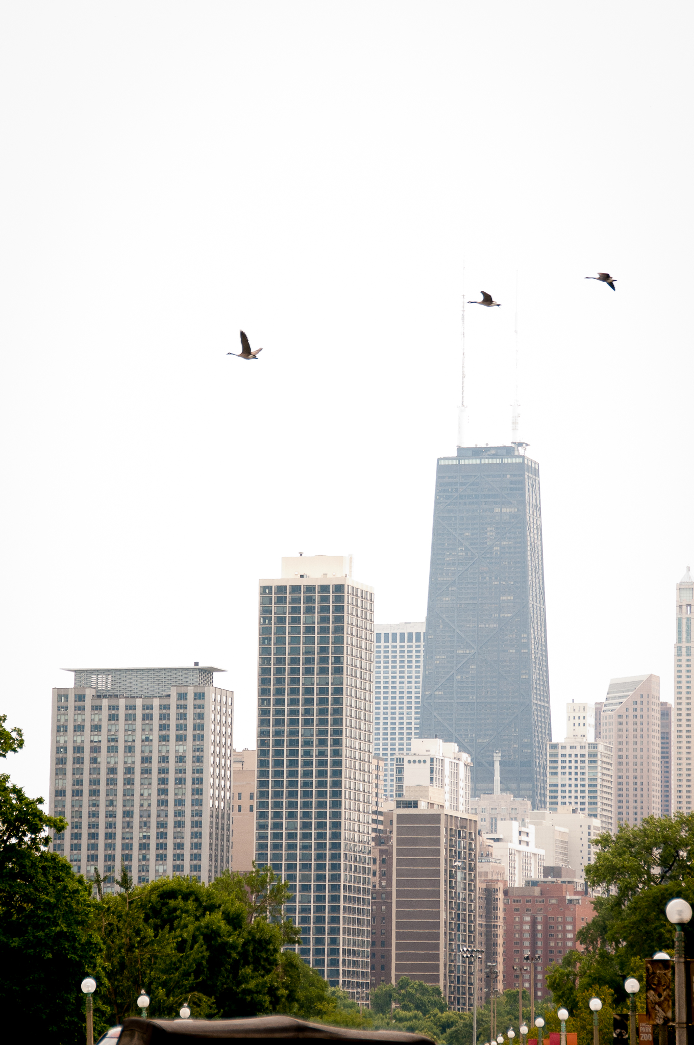 Chicago 2009-2011-7