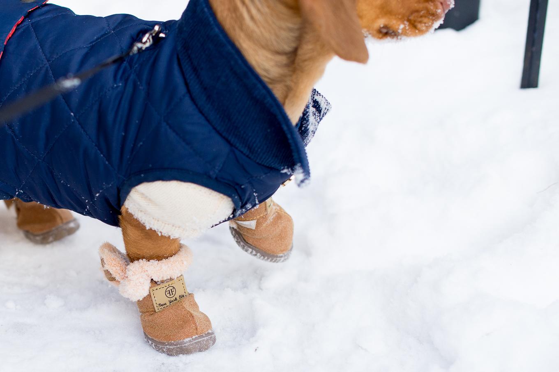 Furry Footwear-17
