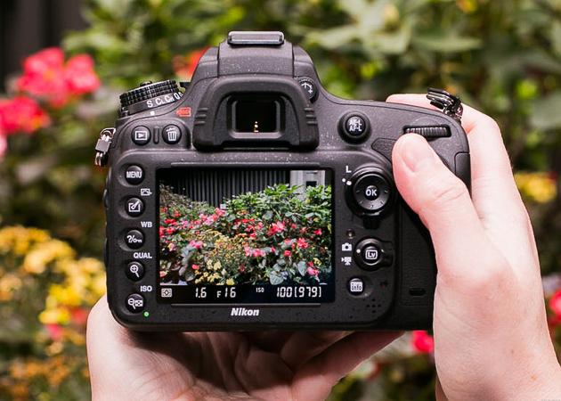 Nikon d610-1