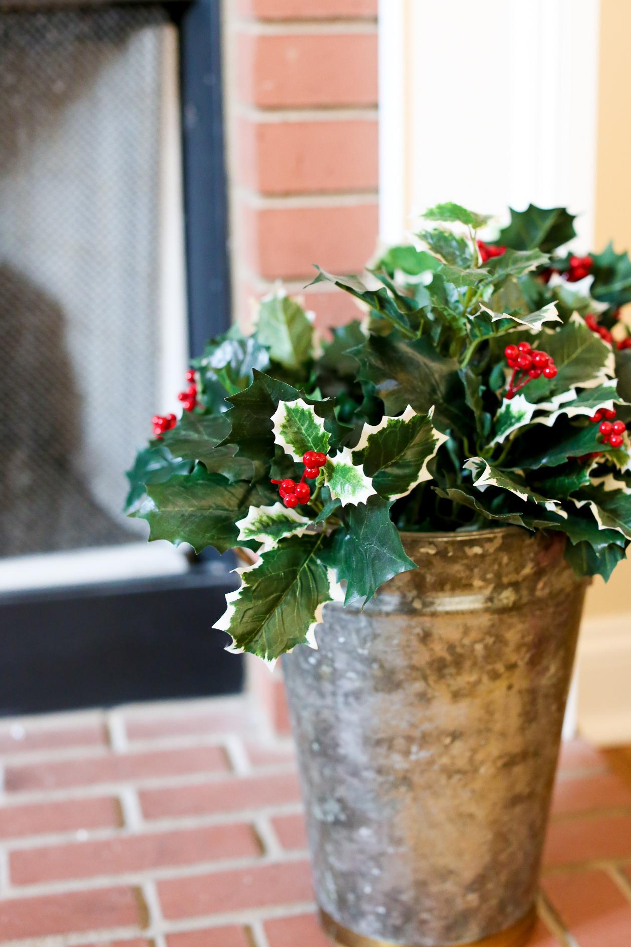 Bucks County, PA Christmas-22
