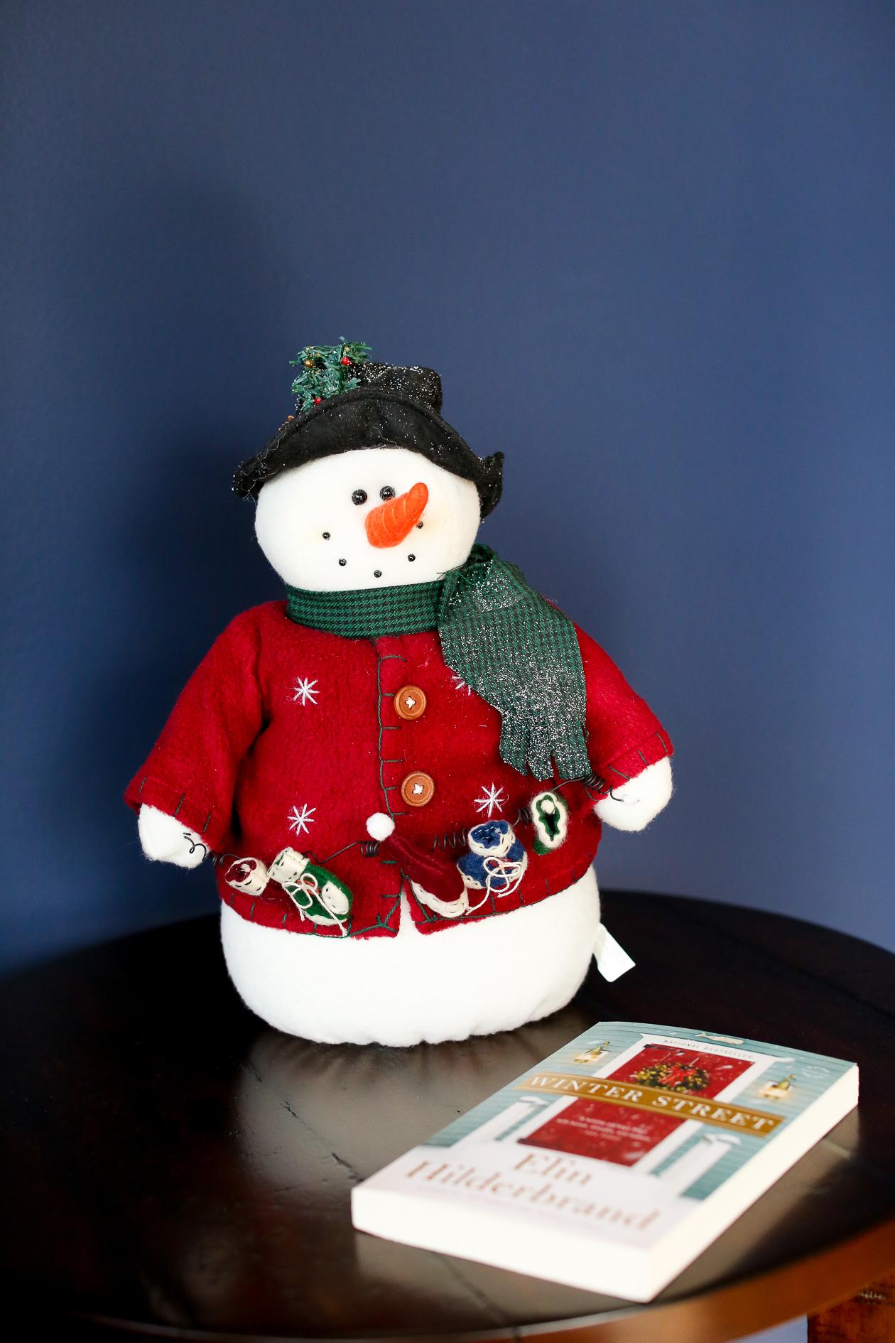 Bucks County, PA Christmas-35