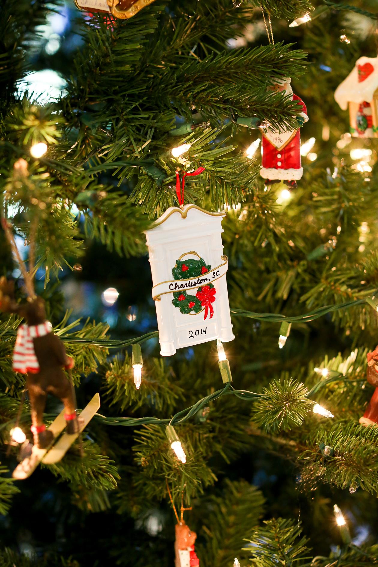 Bucks County, PA Christmas-6