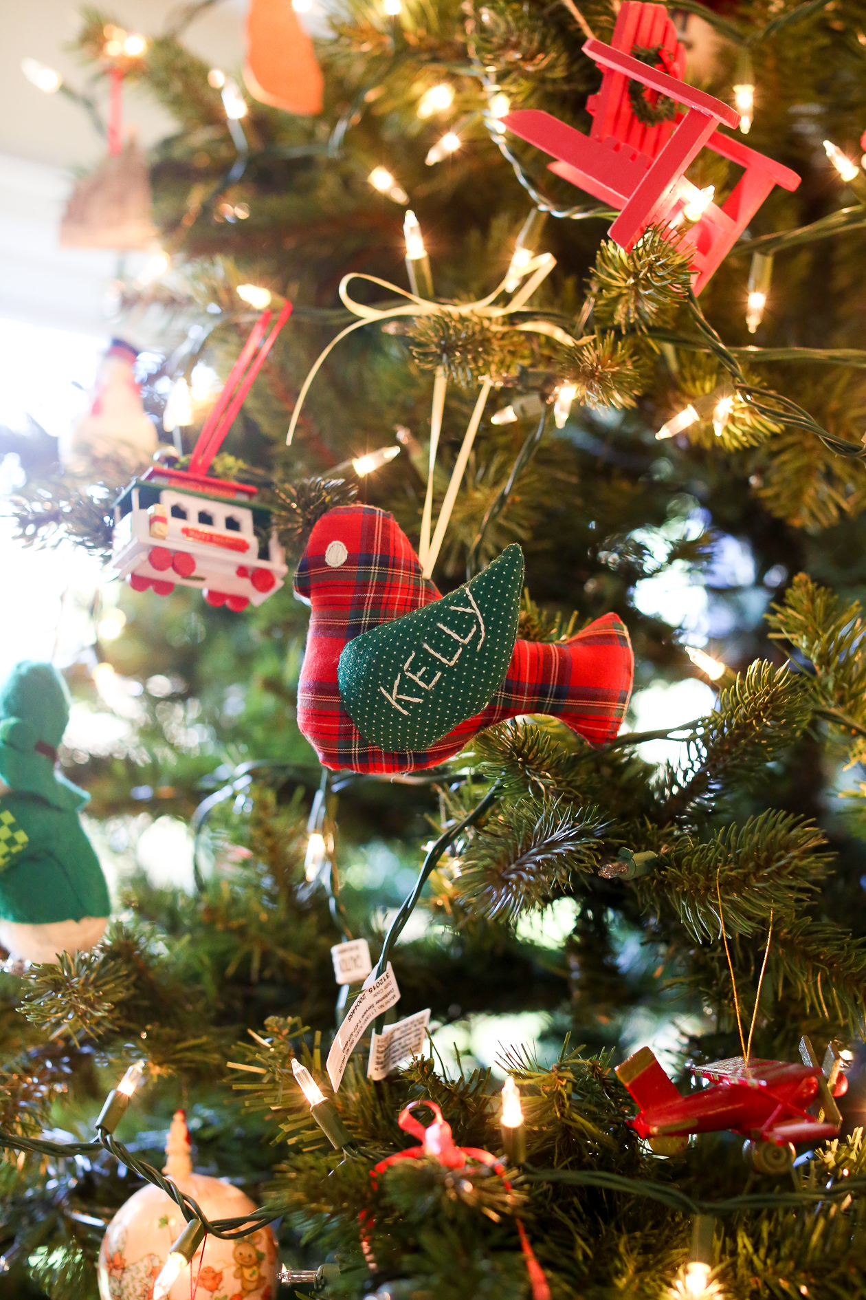 Bucks County, PA Christmas-7