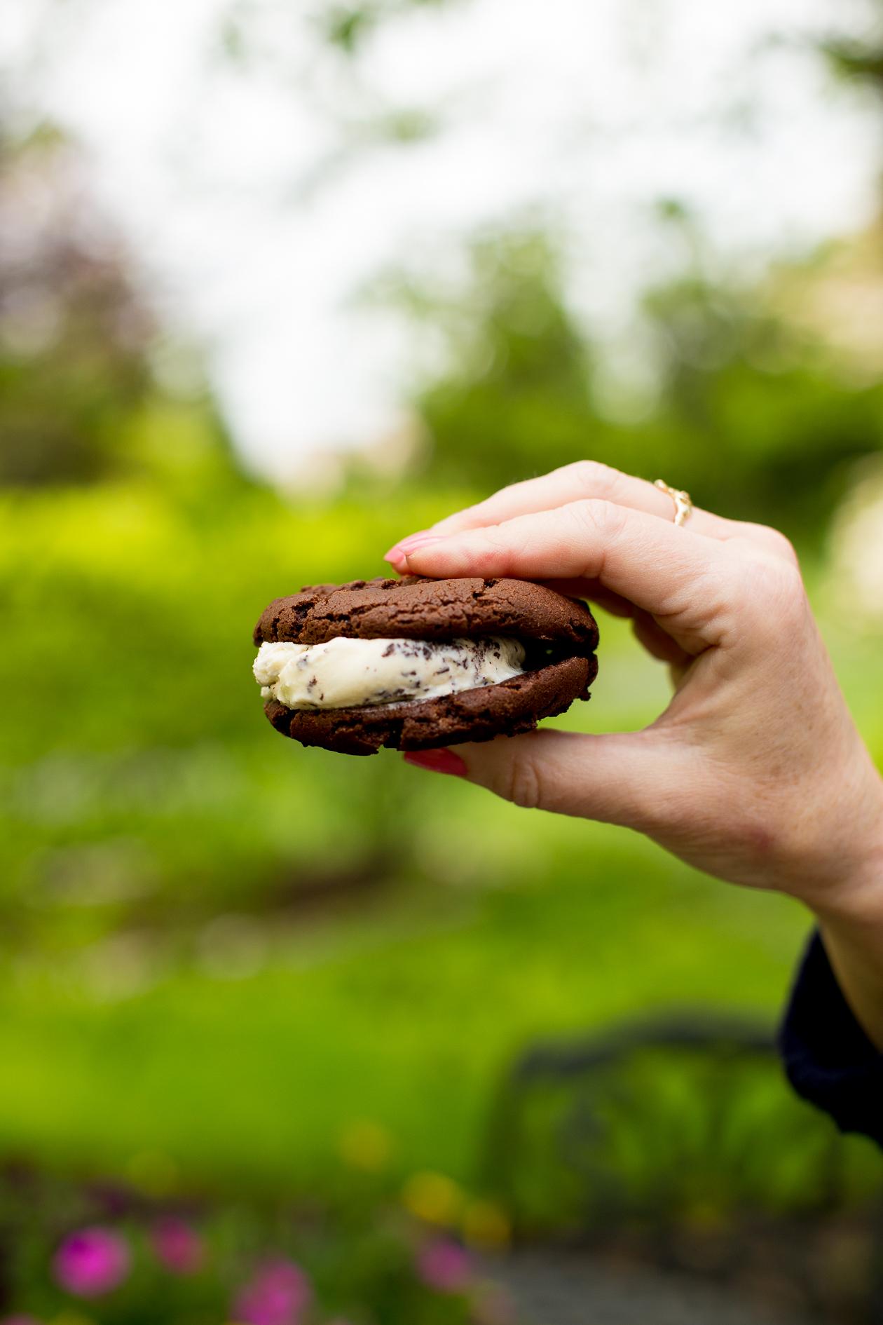 Baskin-Robbins Warm Ice Cream Sandwich-3