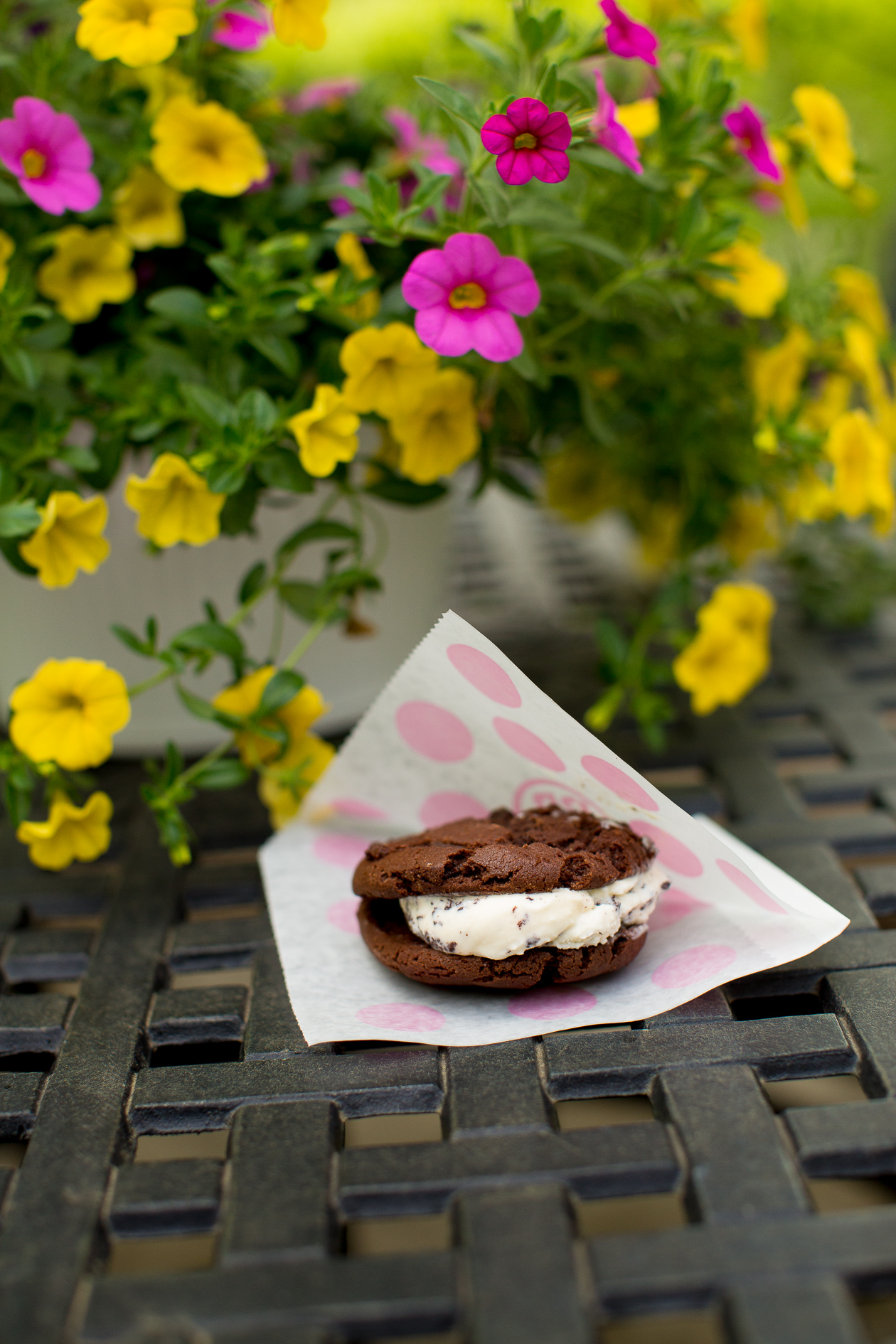 Baskin-Robbins Warm Ice Cream Sandwich-7