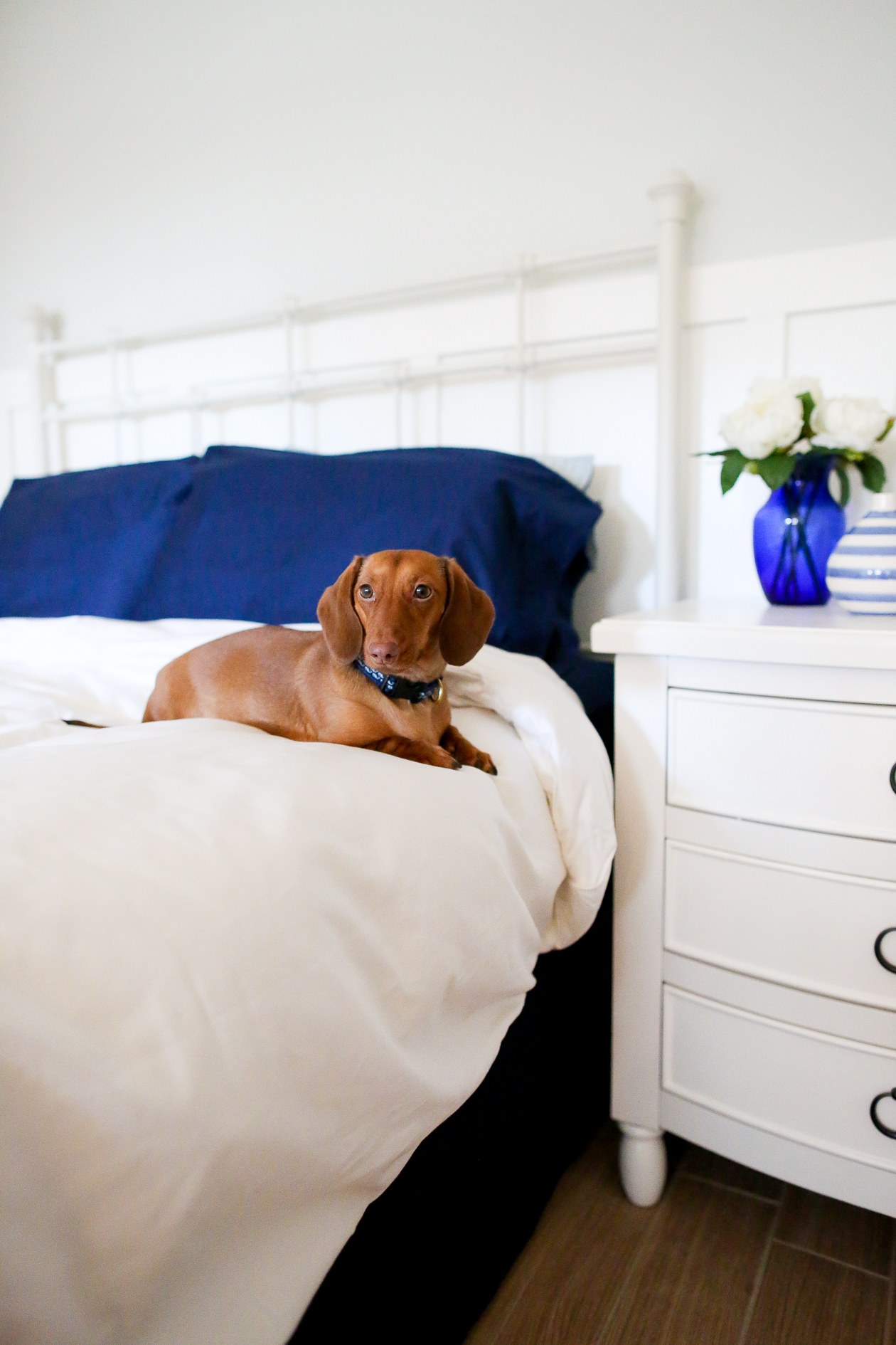 Sachi Home Bedding-108