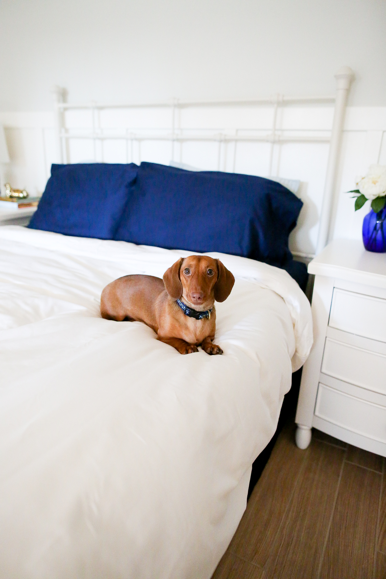 Sachi Home Bedding-83