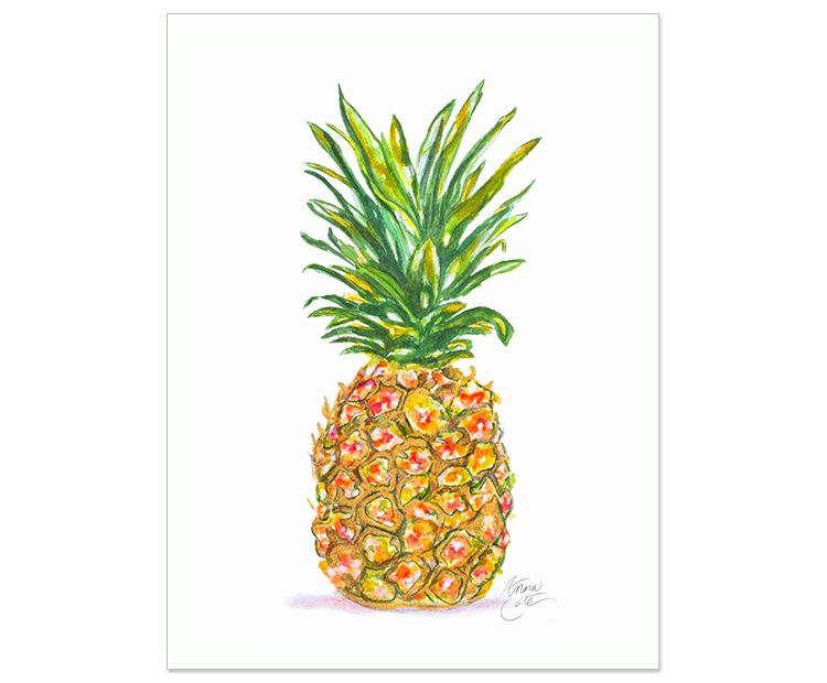 WatercolorSeries_Pineapple-750x620