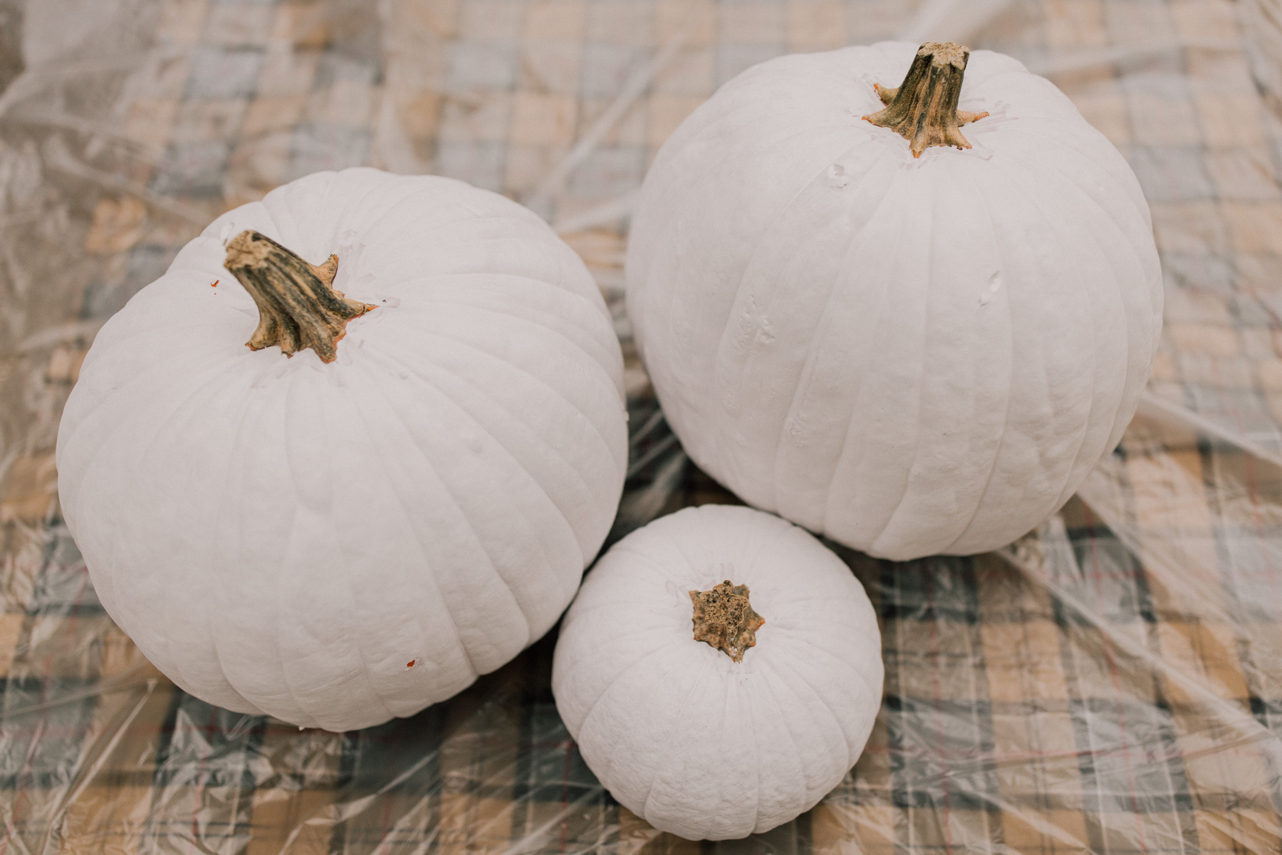 DIY Gingham Pumpkins Tutorial = Step One