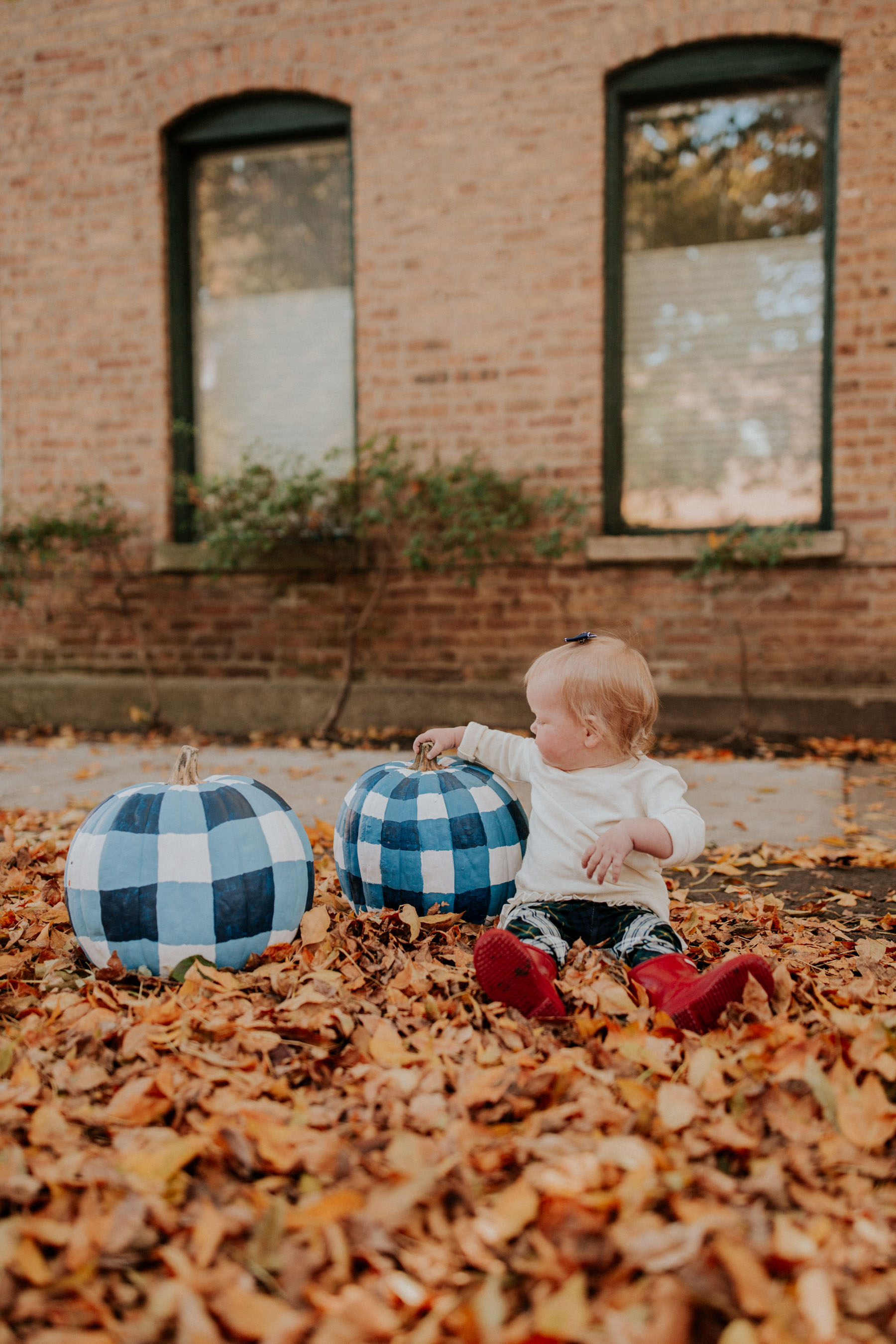 Emma and Gingham Pumpkins