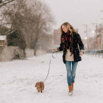 Staples for Winter Dog Walks