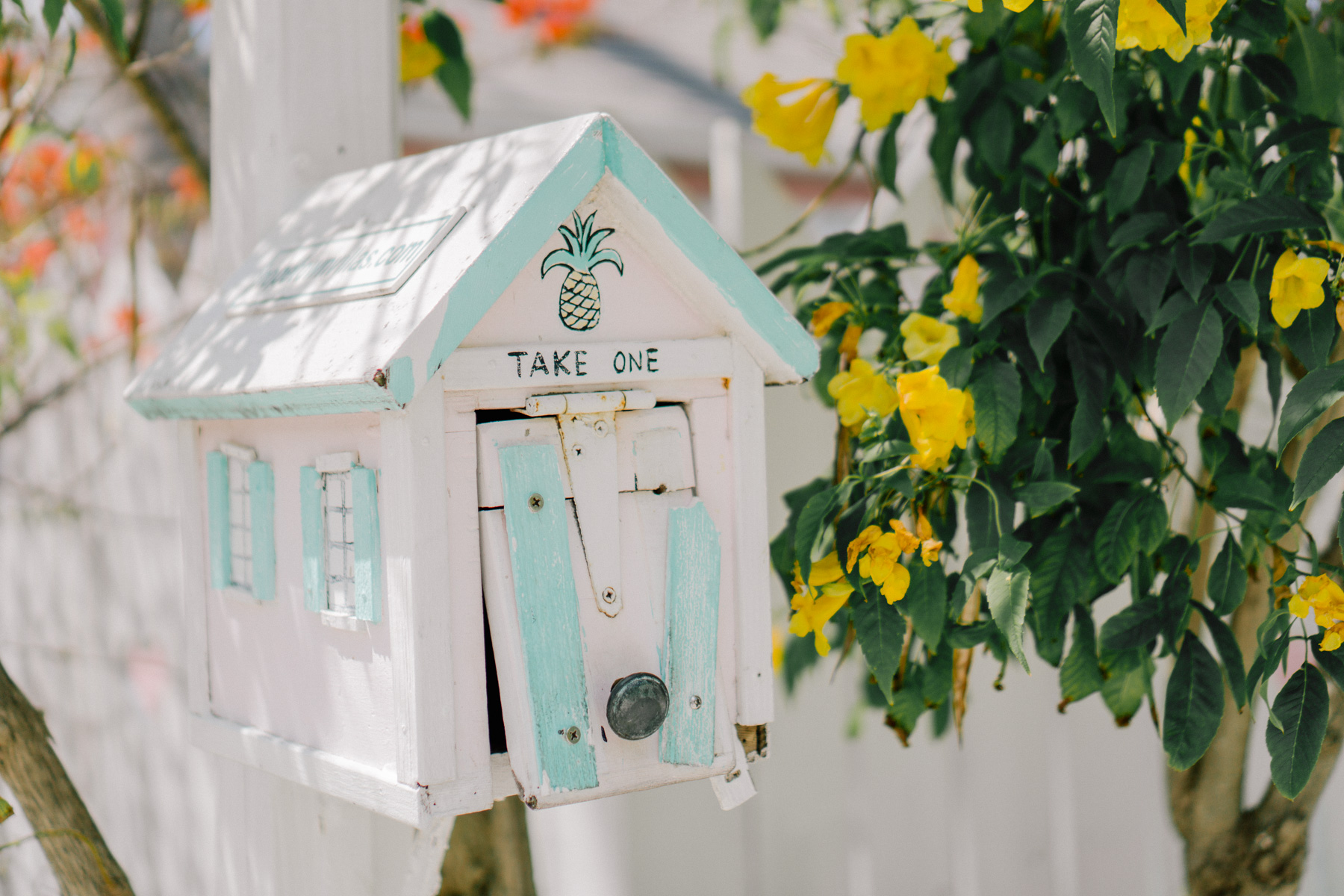 Take one mail in Hope Town Harbor