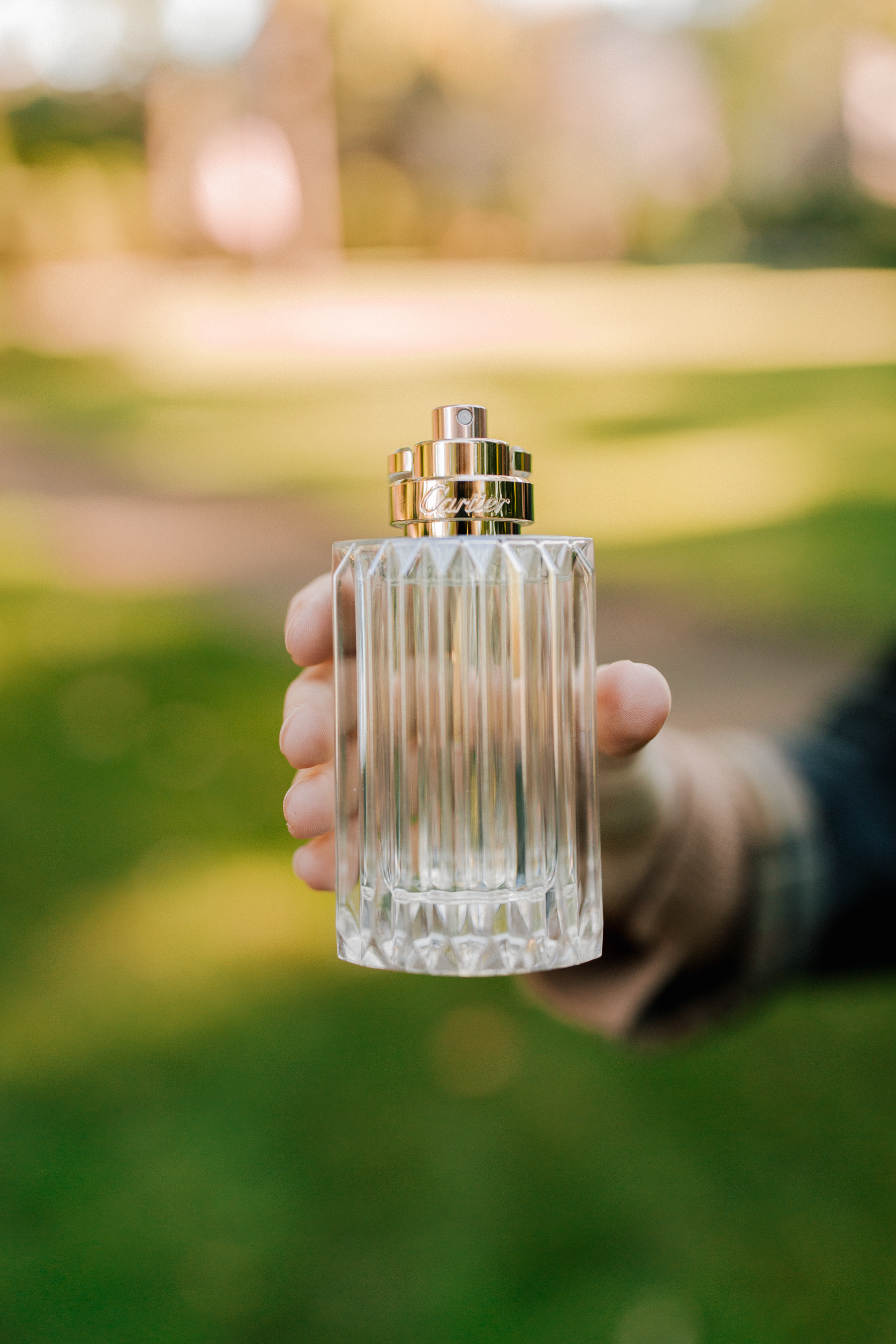 Cartier Carat Perfume - Kelly in the City