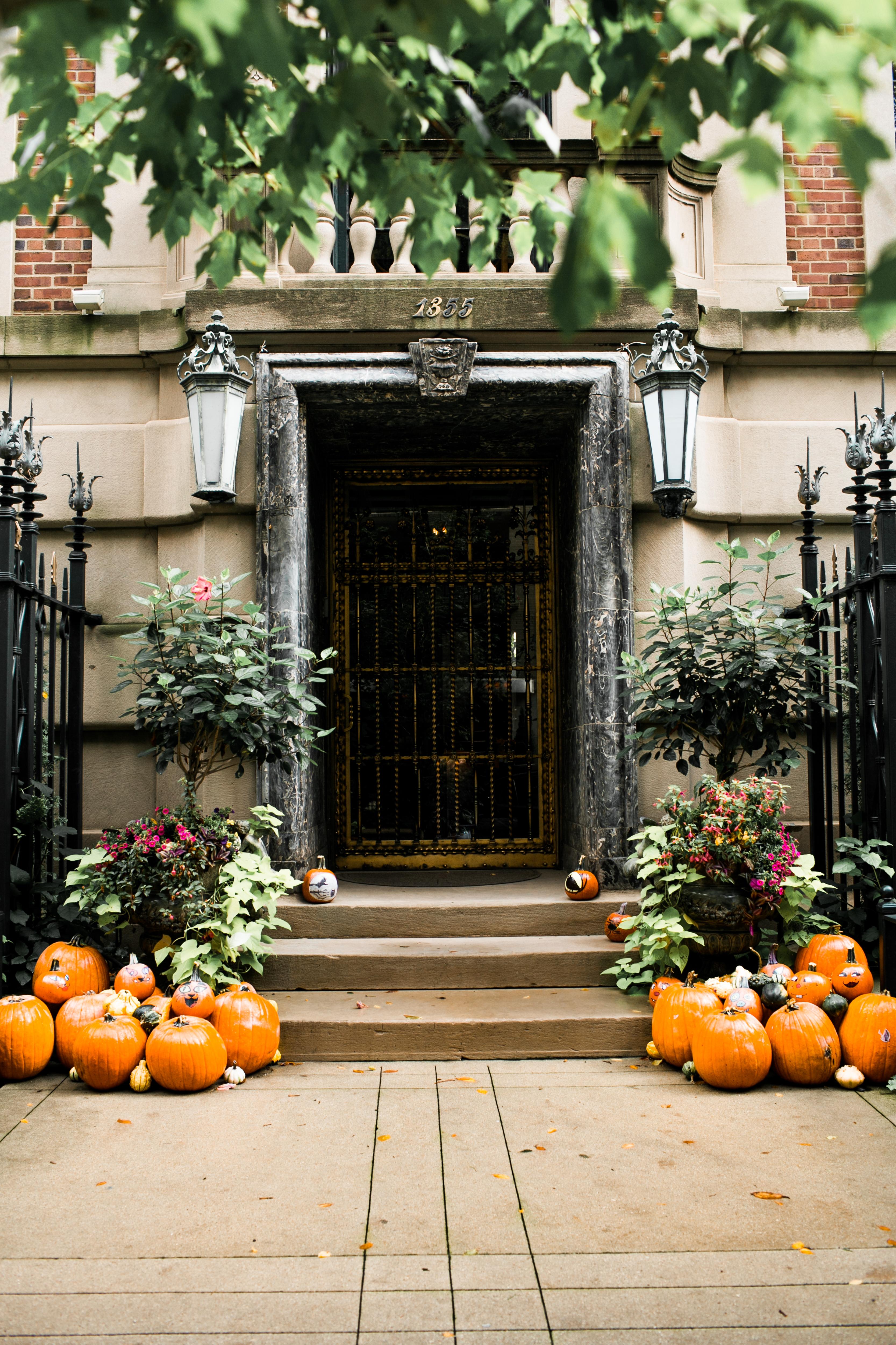 A bundle of pumpkins.