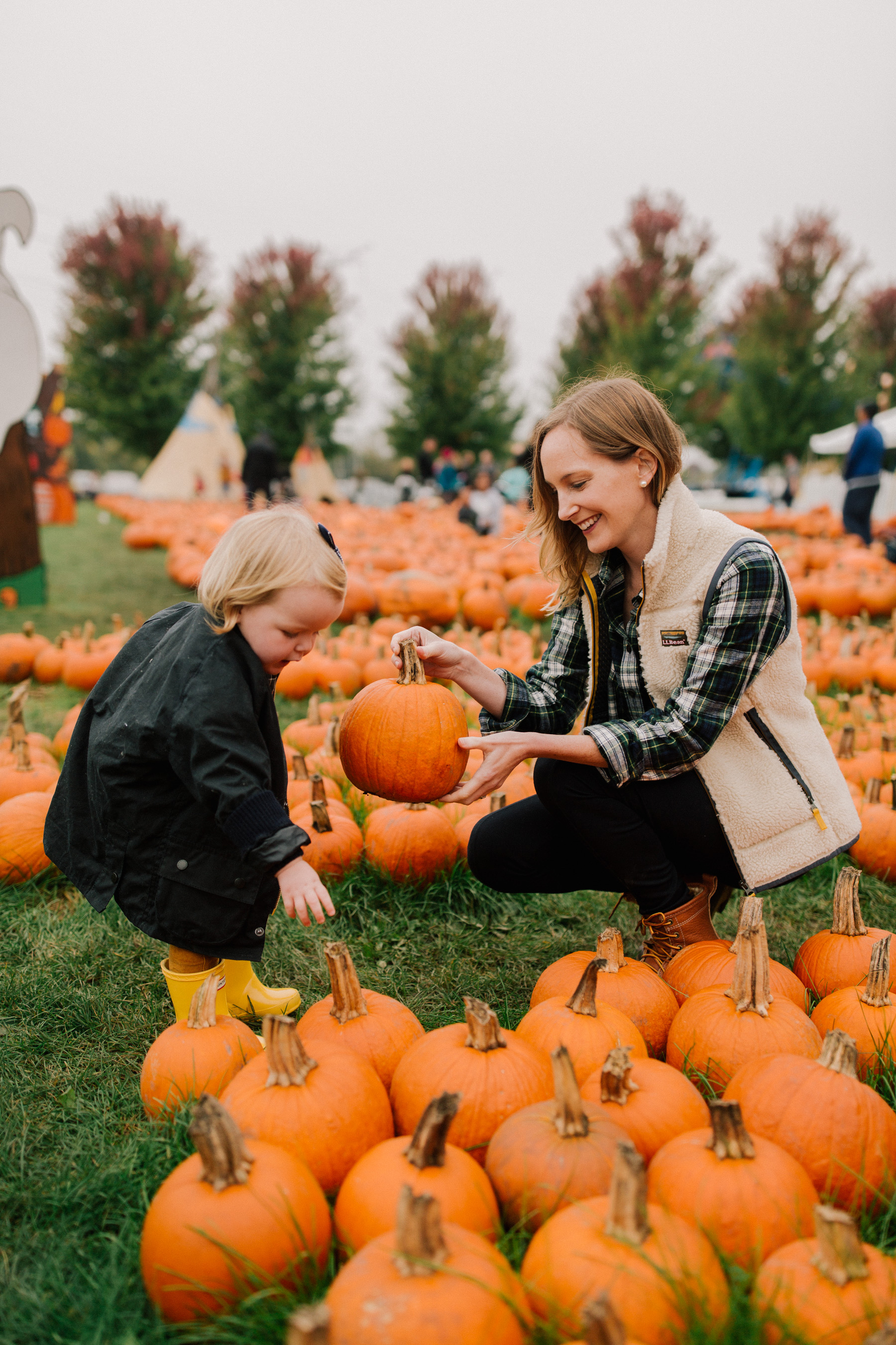 Pumpkin Picking Road Trip - Didier Farms in Lincolnshire |  Kelly in the City