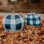 gingham pumpkins