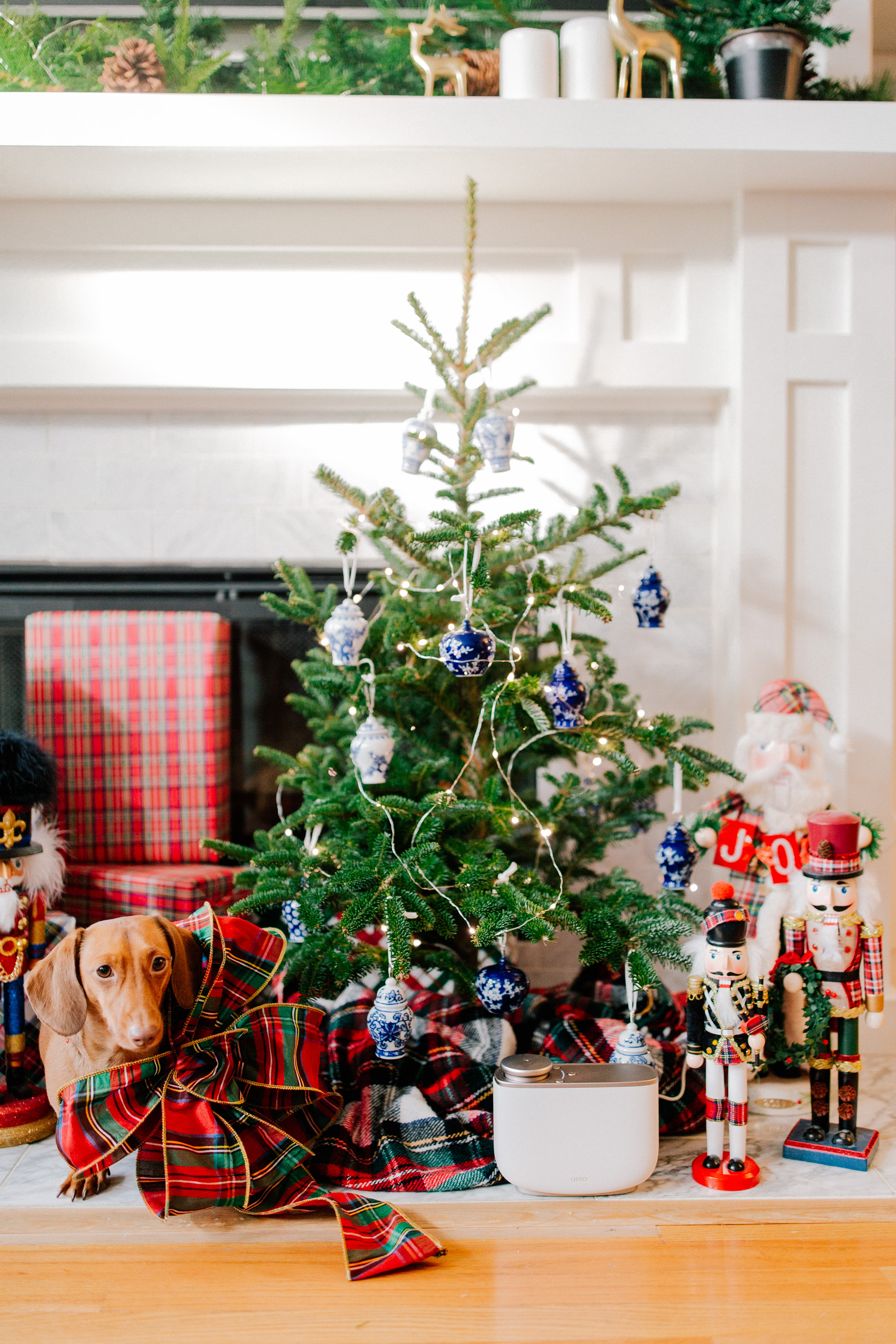 Preppy Home Gift Guide