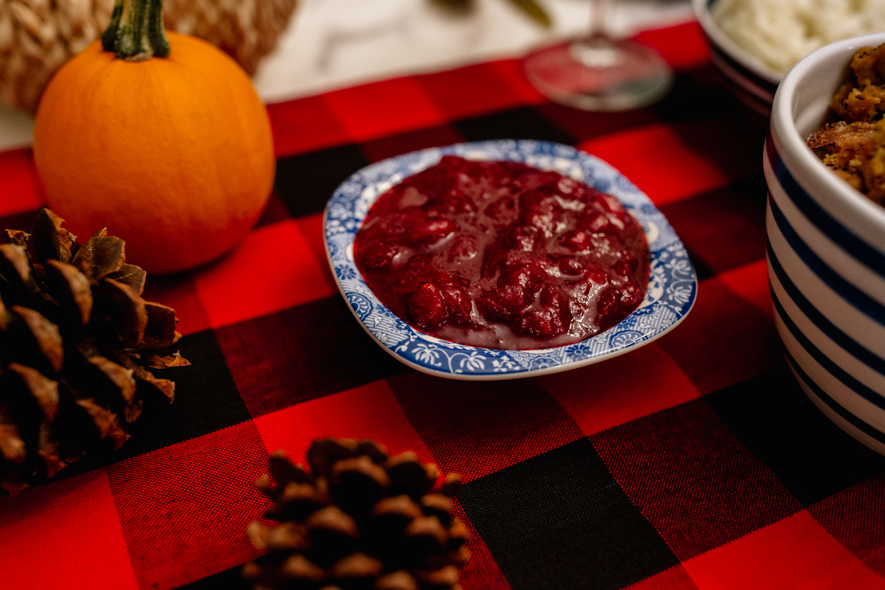 Tips for Hosting Thanksgiving for the First Time - Kelly in the City