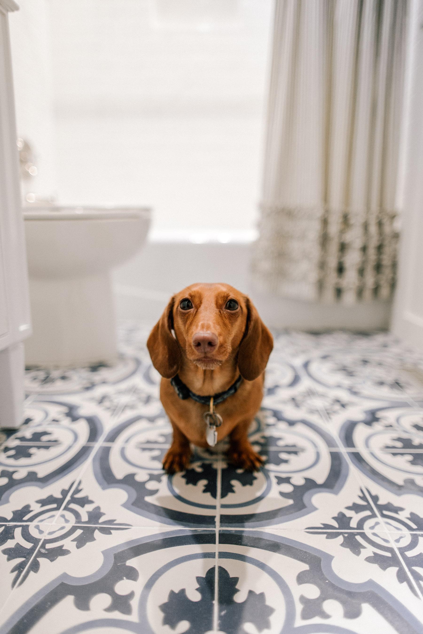 Our Bathroom Renovation