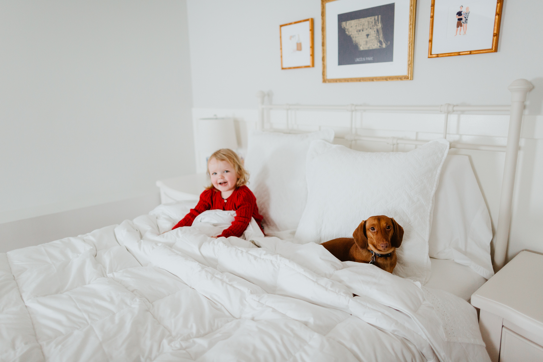 The oversized, extra-warm down comforter - The Company Store - White Sale