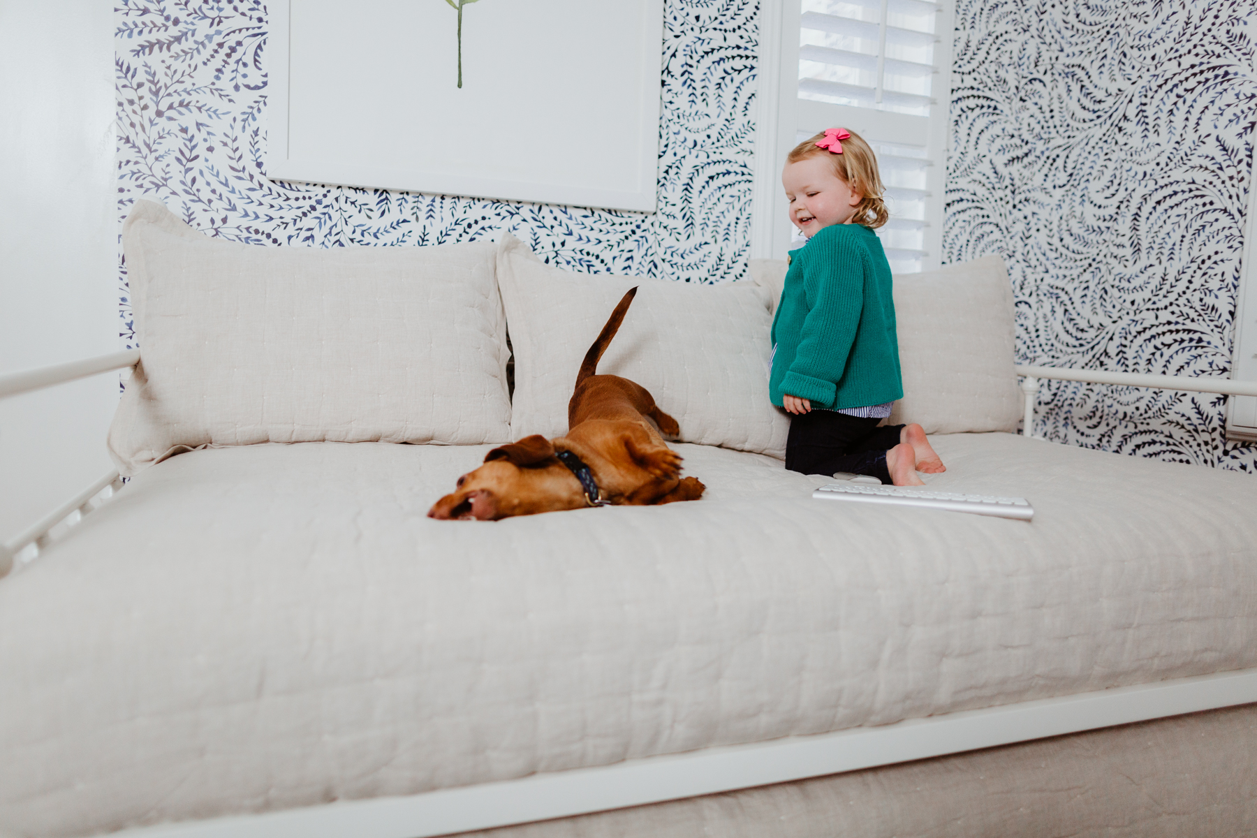 Emma and Noodle playing over Amazon Daybed with Trundle