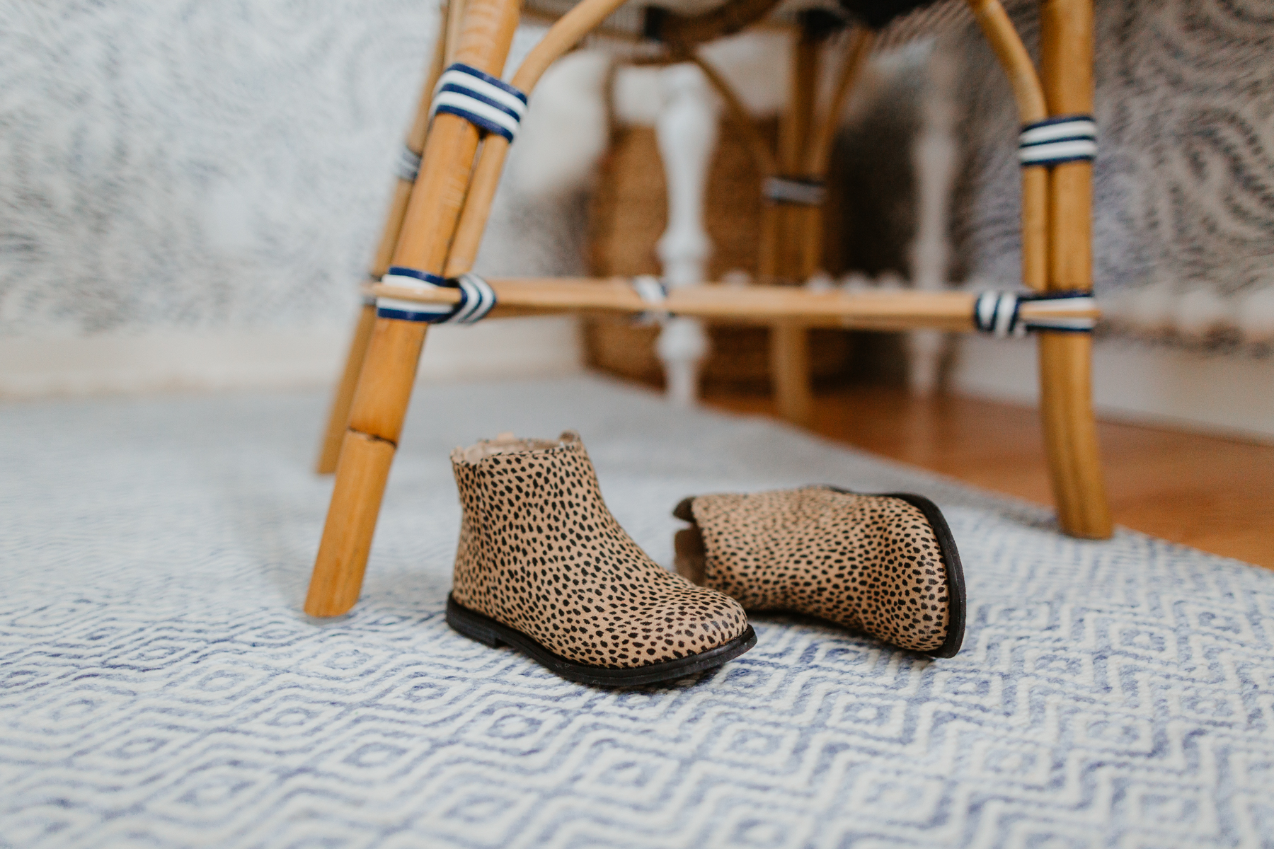 Performance Indoor/Outdoor Rug (So soft!), and animal print boots