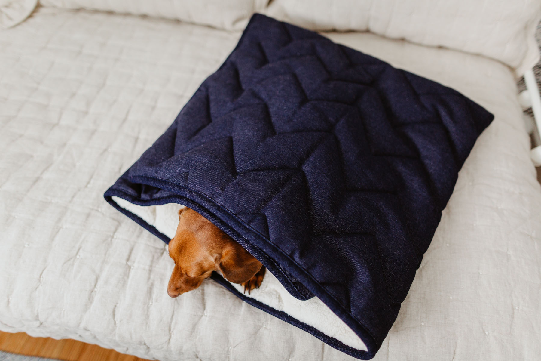 The cutest dog products - Denim Pet Sleeping Bag