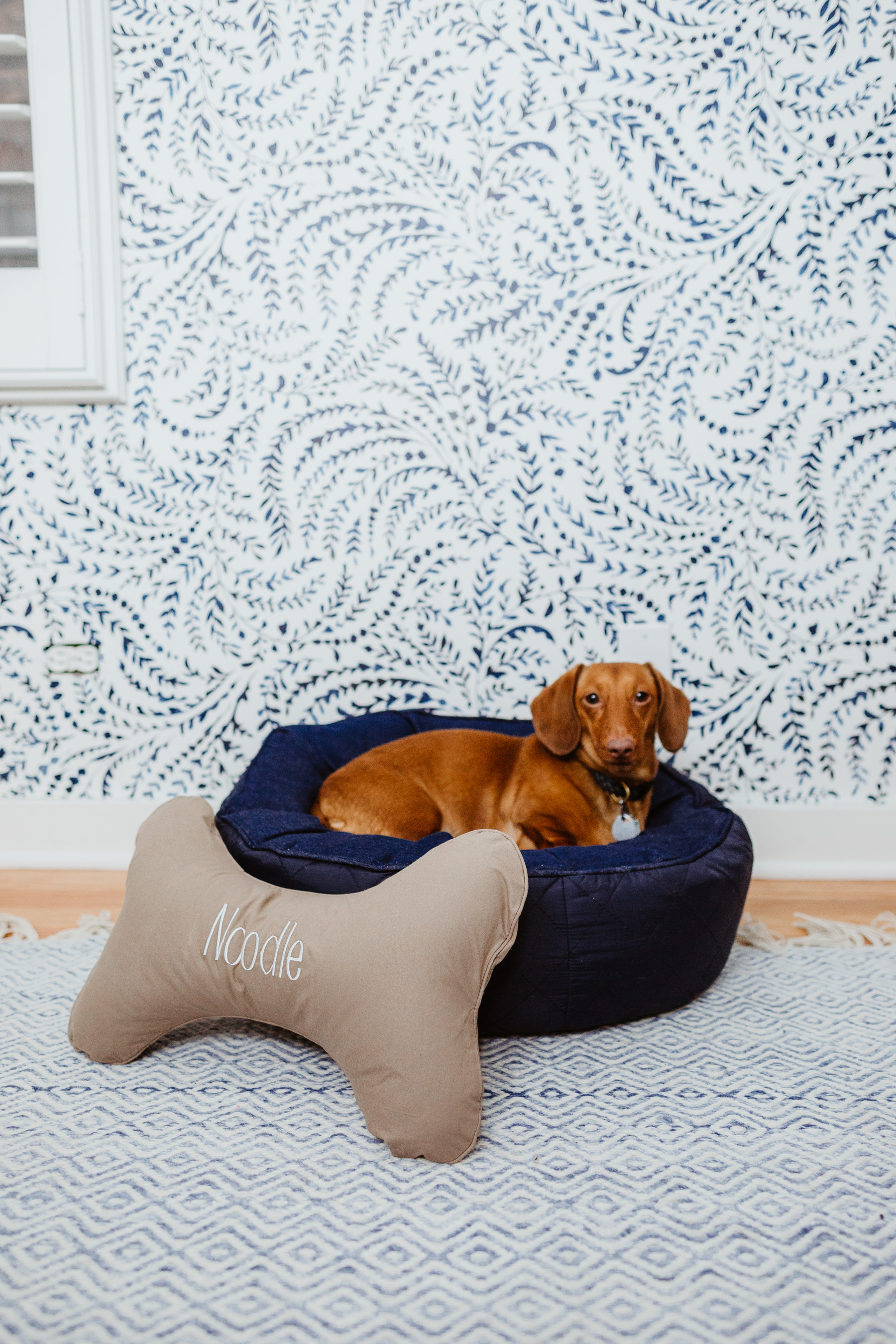 The Cutest Dog Products - Solid round dog bag