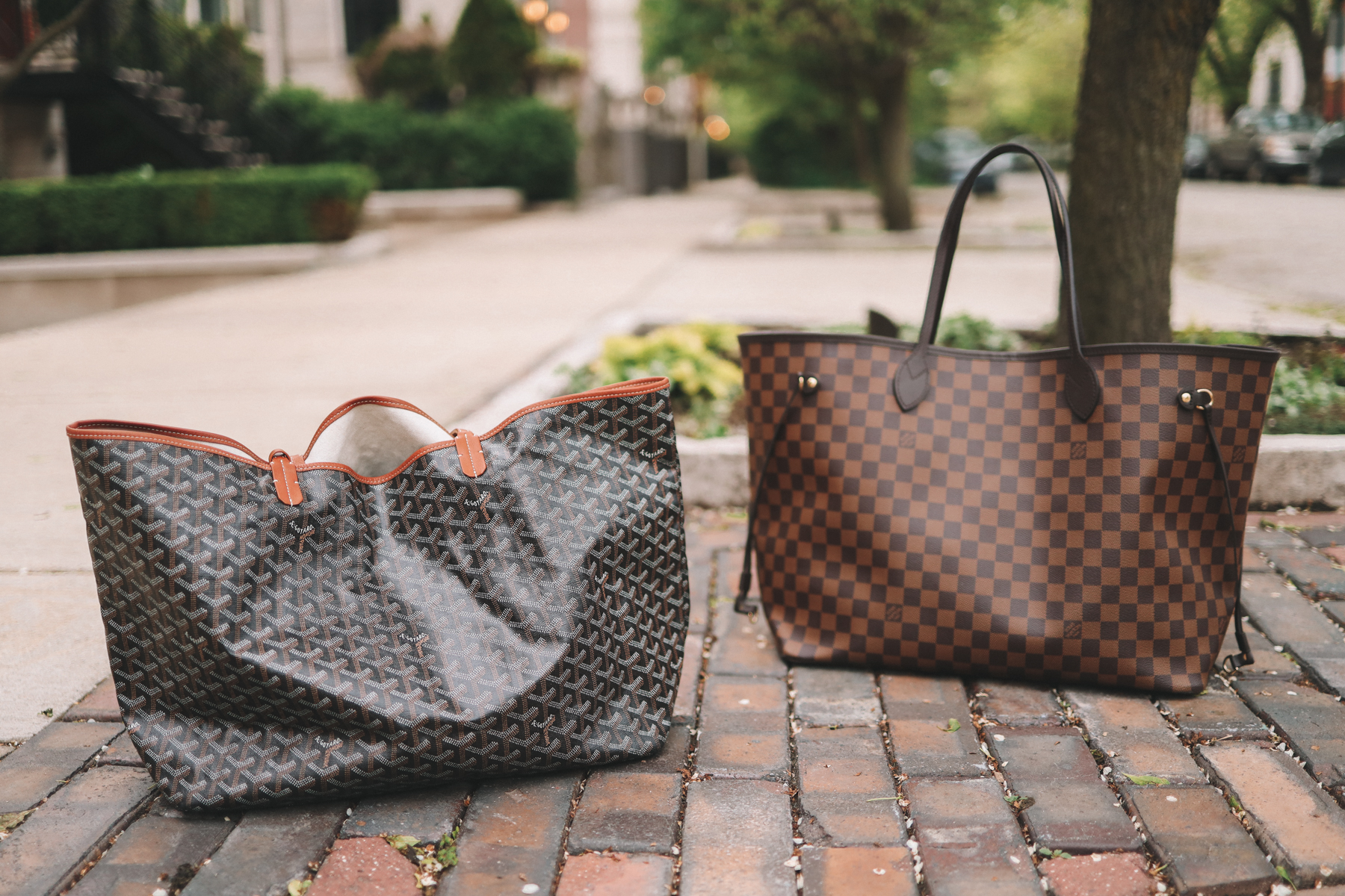 Louis Vuitton Neverfull vs Goyard Saint Louis Totes review by Kelly in the City