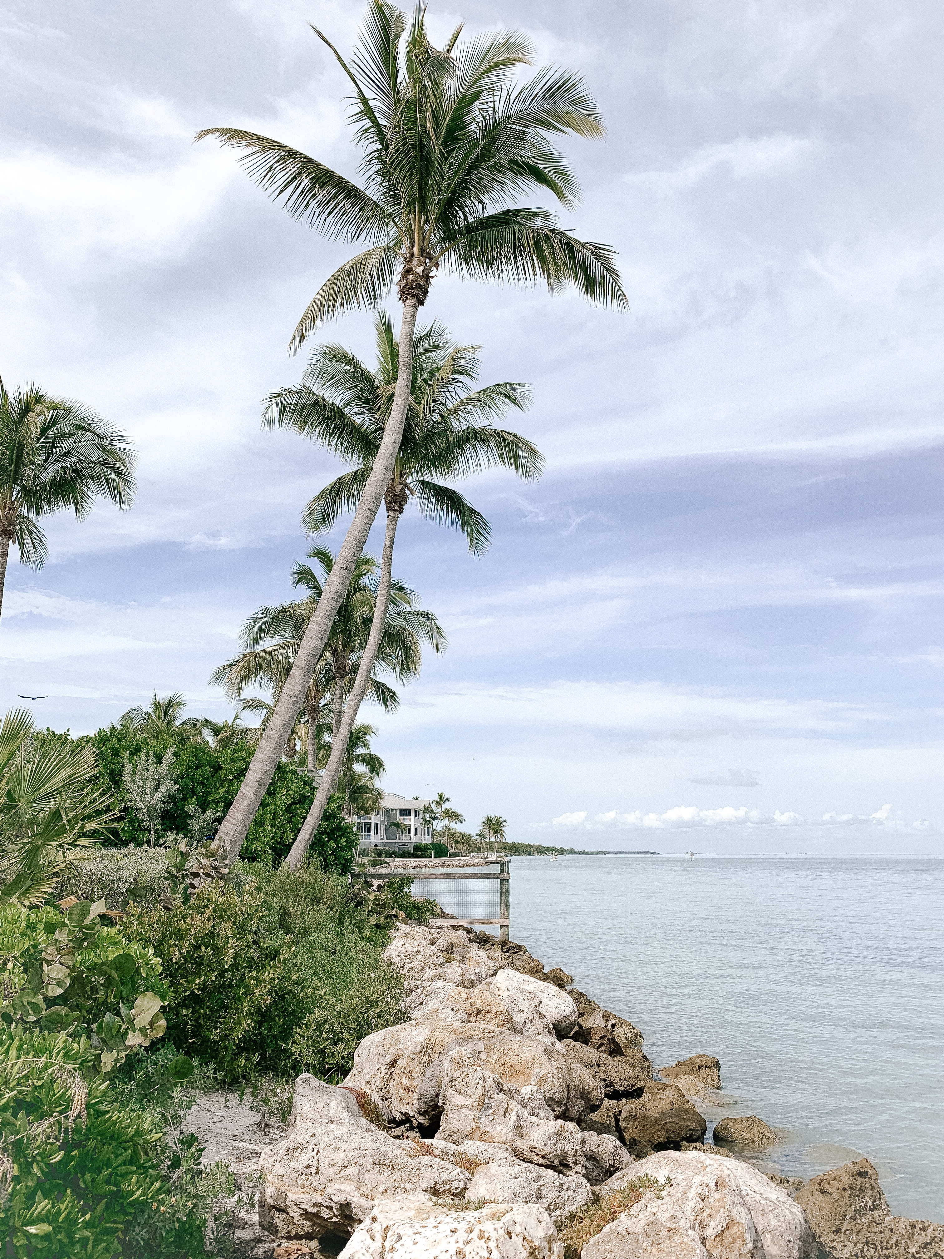 Guide to Captiva