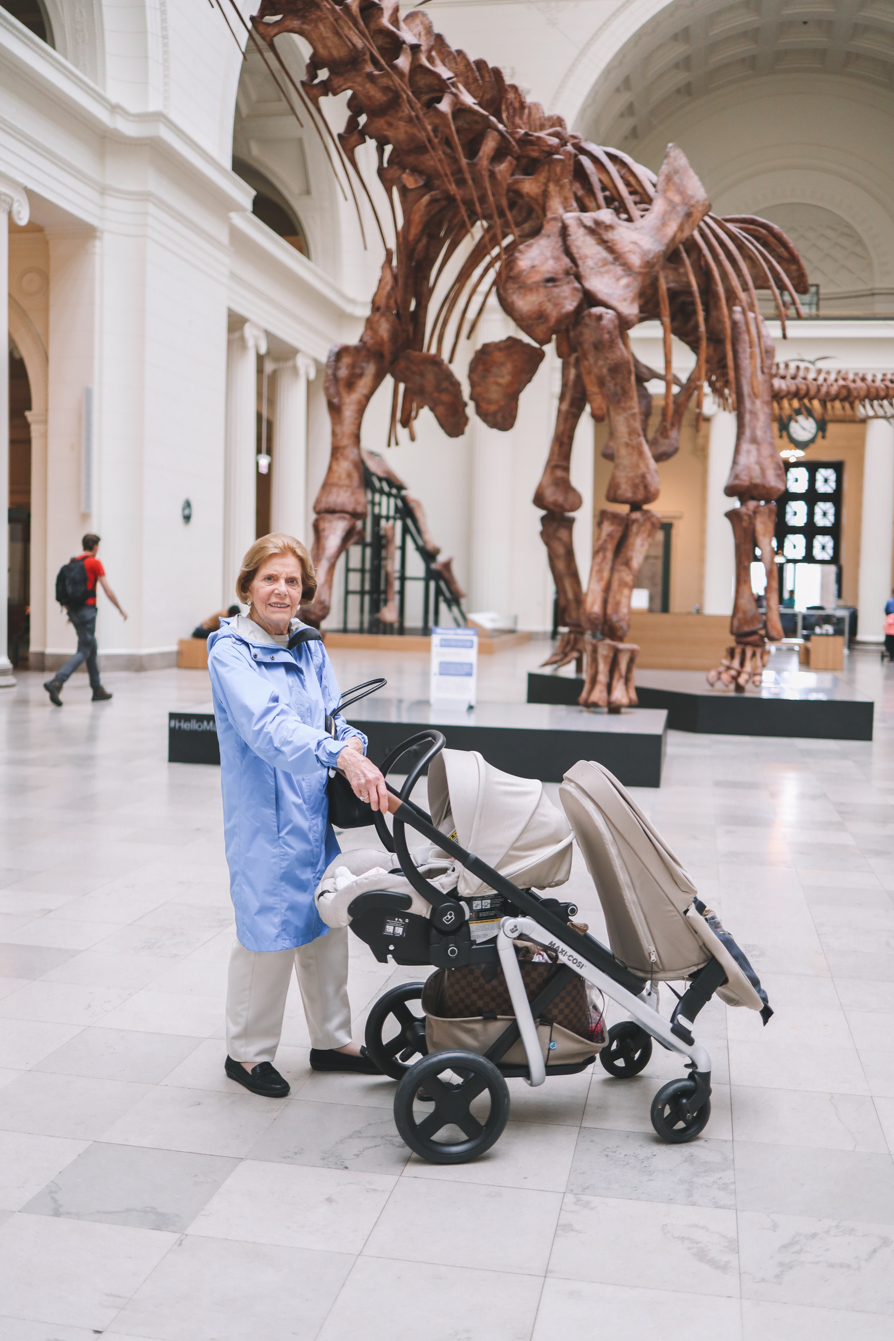 Visiting the Field Museum in Chicago | Kelly in the City