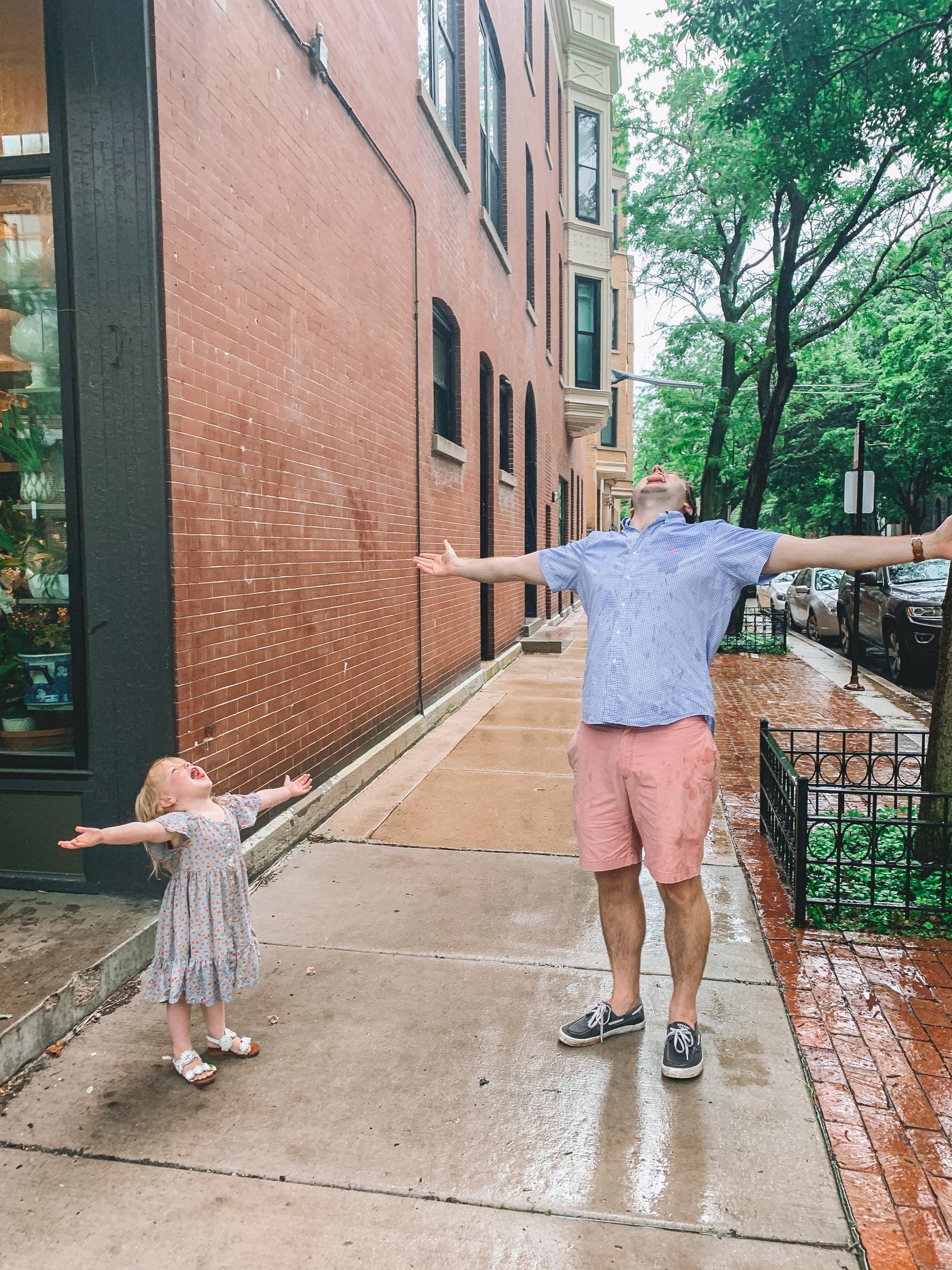 Lincoln Park Rainstorm