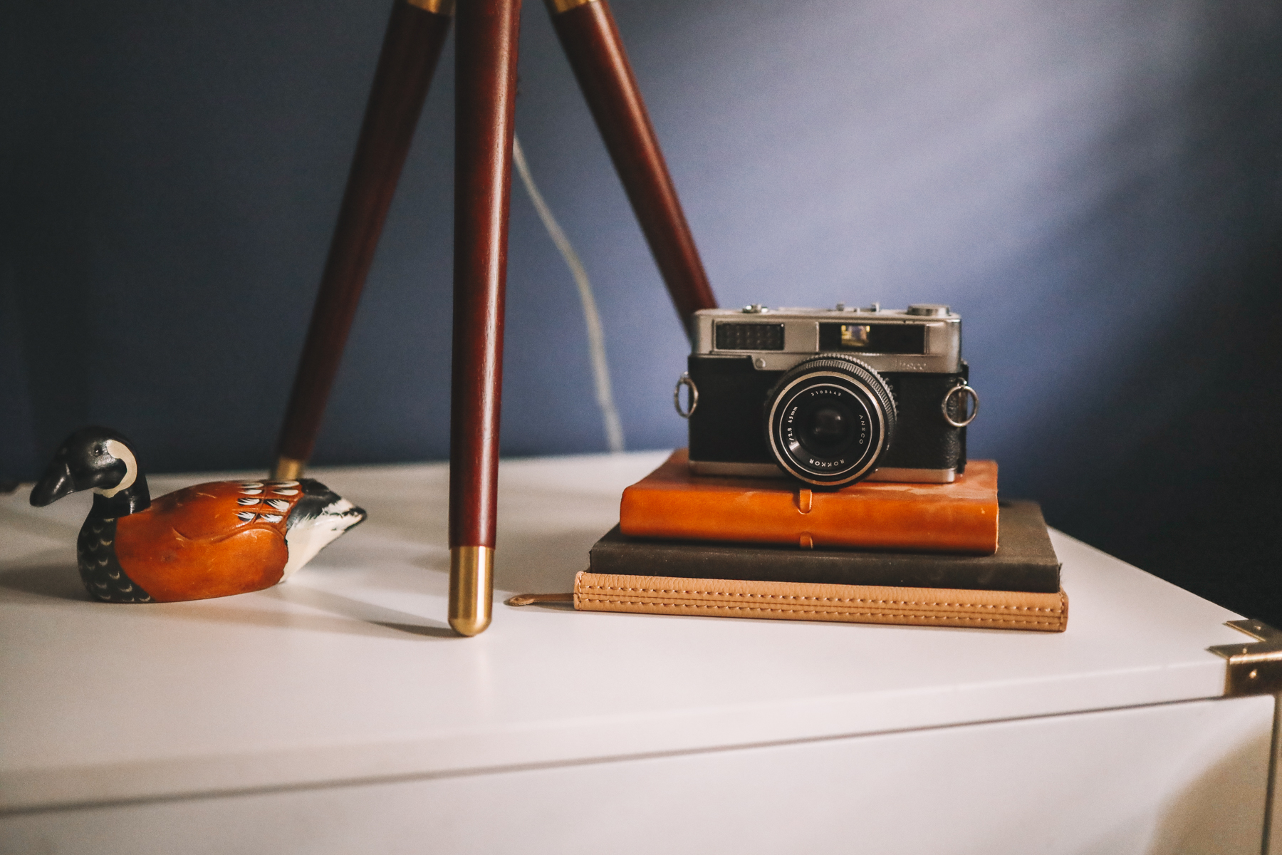camera and books and a white shelf