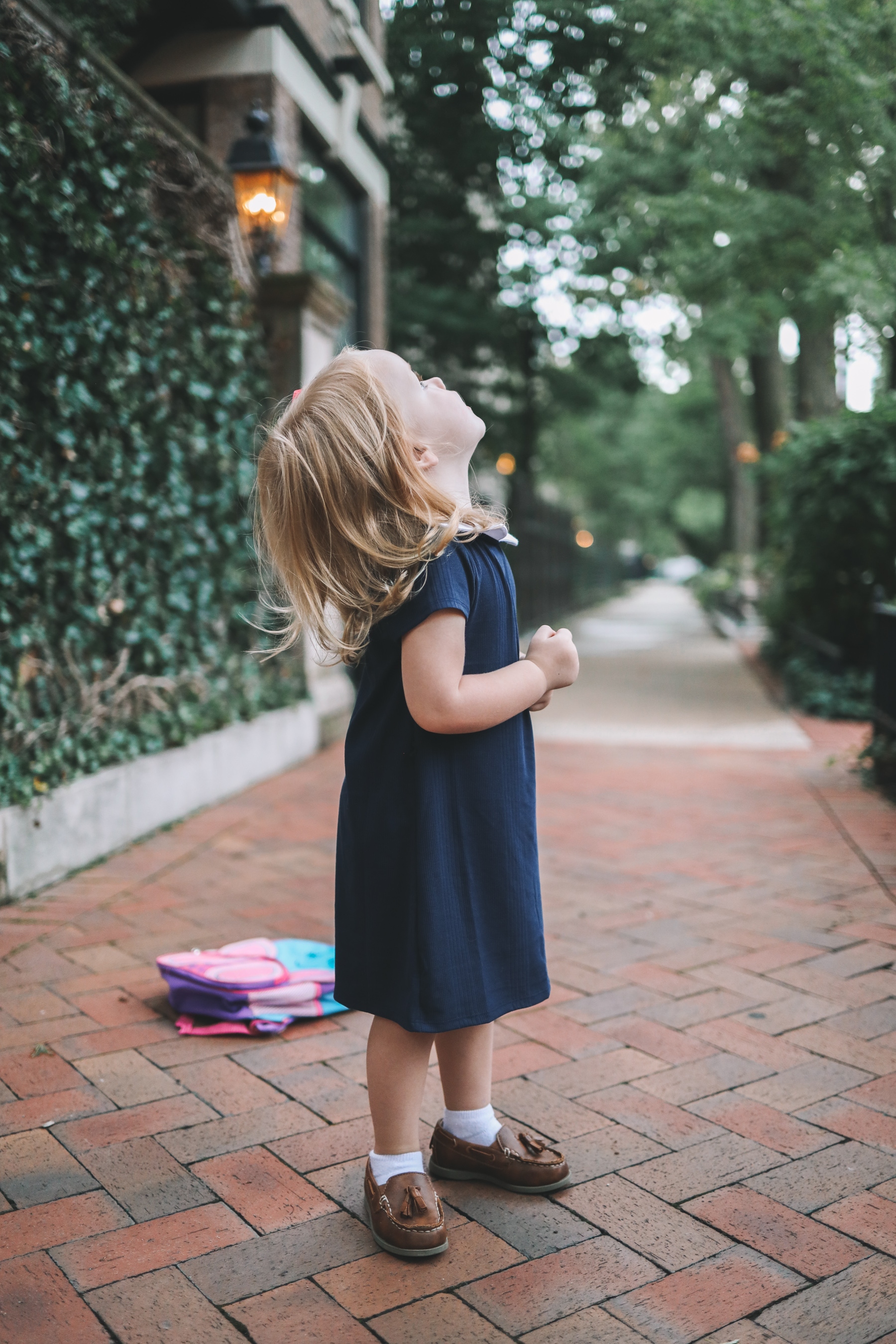 Navy Peter Pan Collar Dress