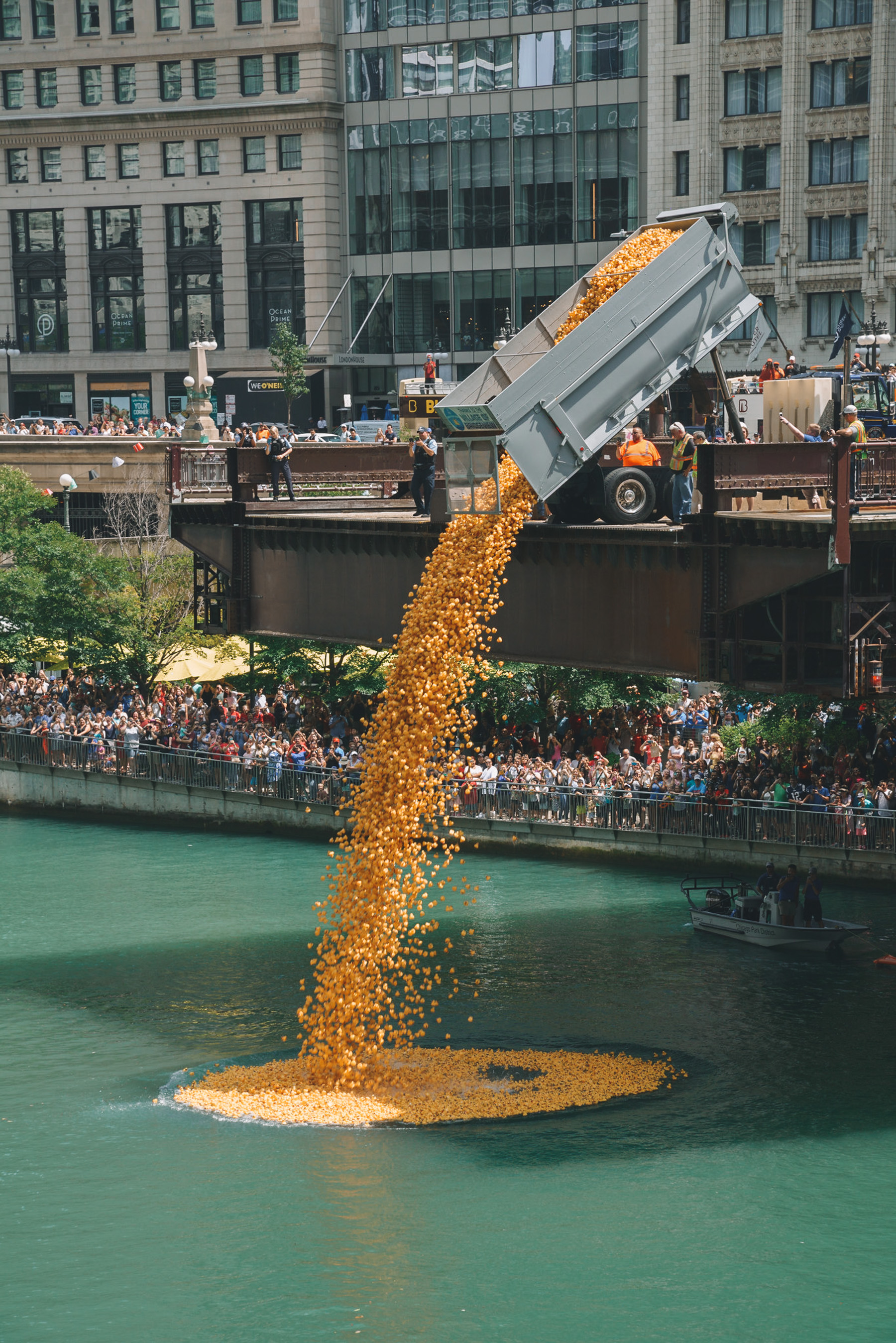 The beginning of the Ducky Derby Fundraiser, thousands of rubber ducks are poured into the river