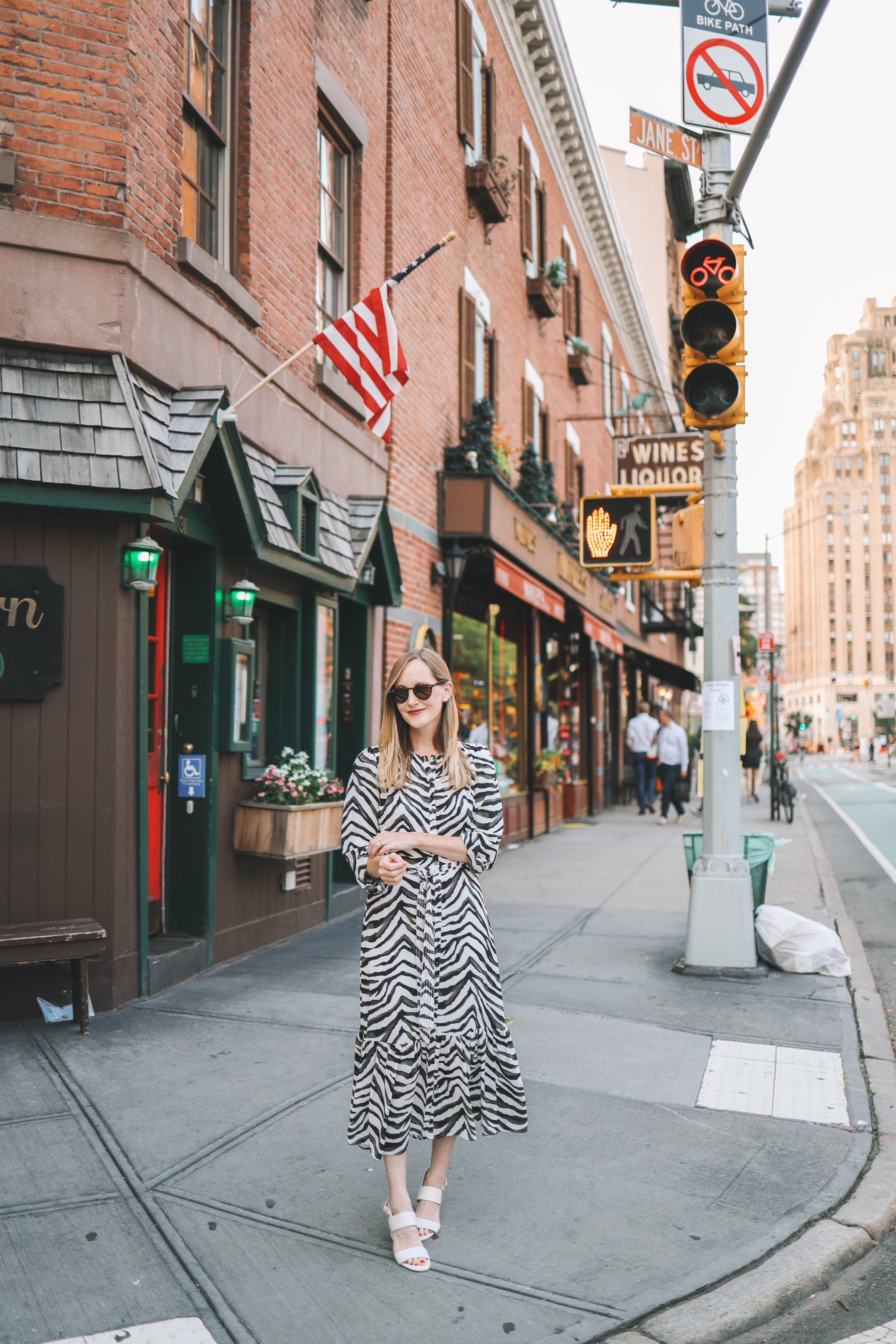 The  Zebra Dress from Banana Republic by Kelly in the City