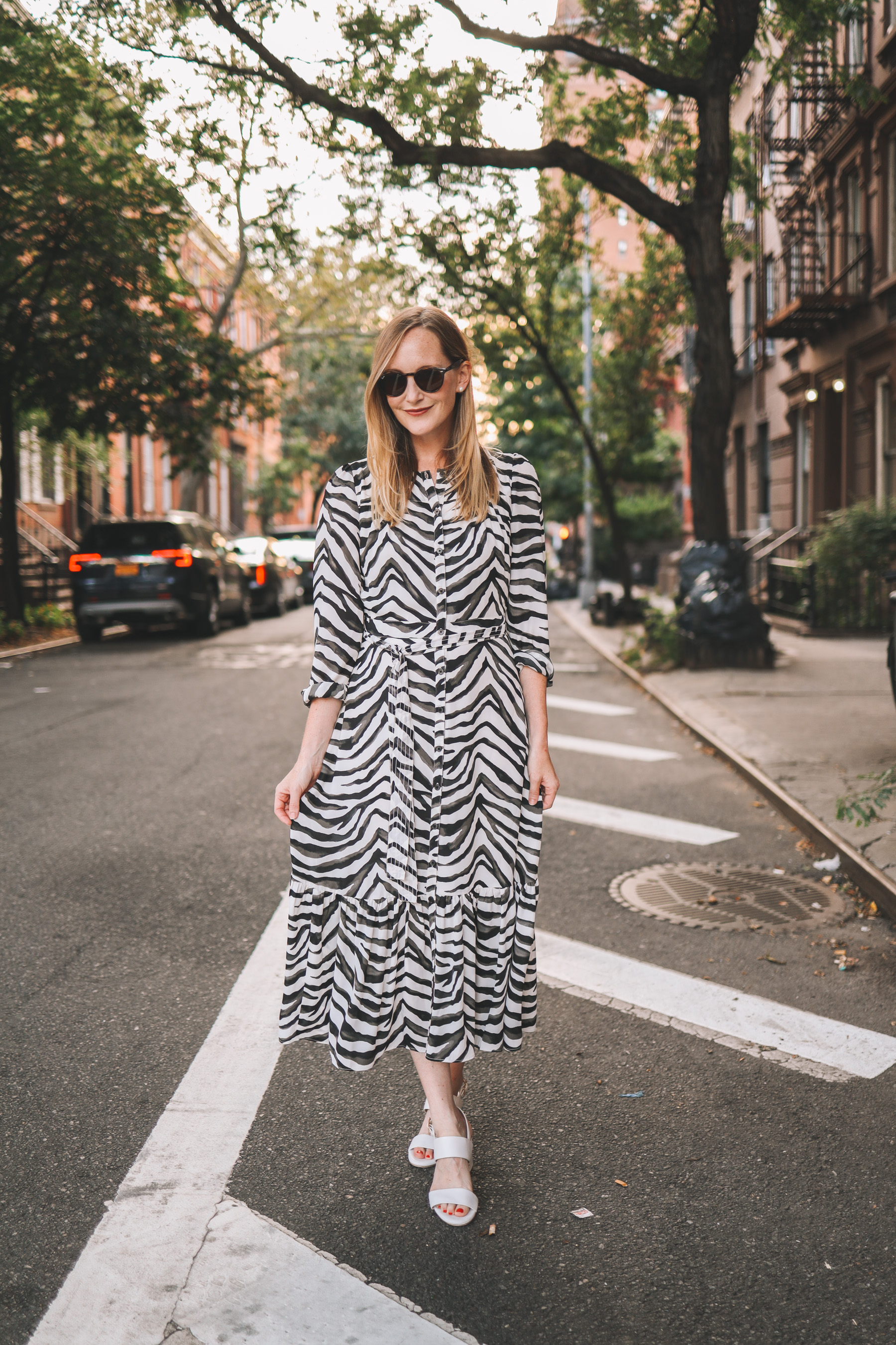 Banana Republic Midi Zebra Shirt Dress