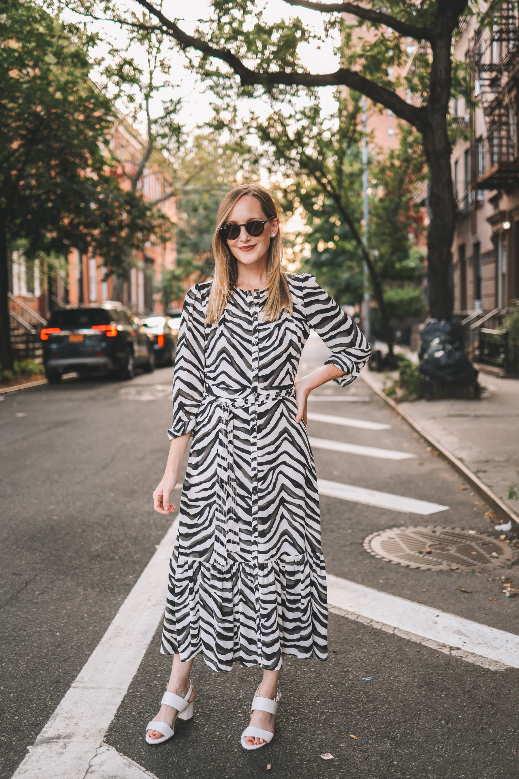 The  Zebra Dress from Banana Republic | Kelly in the City