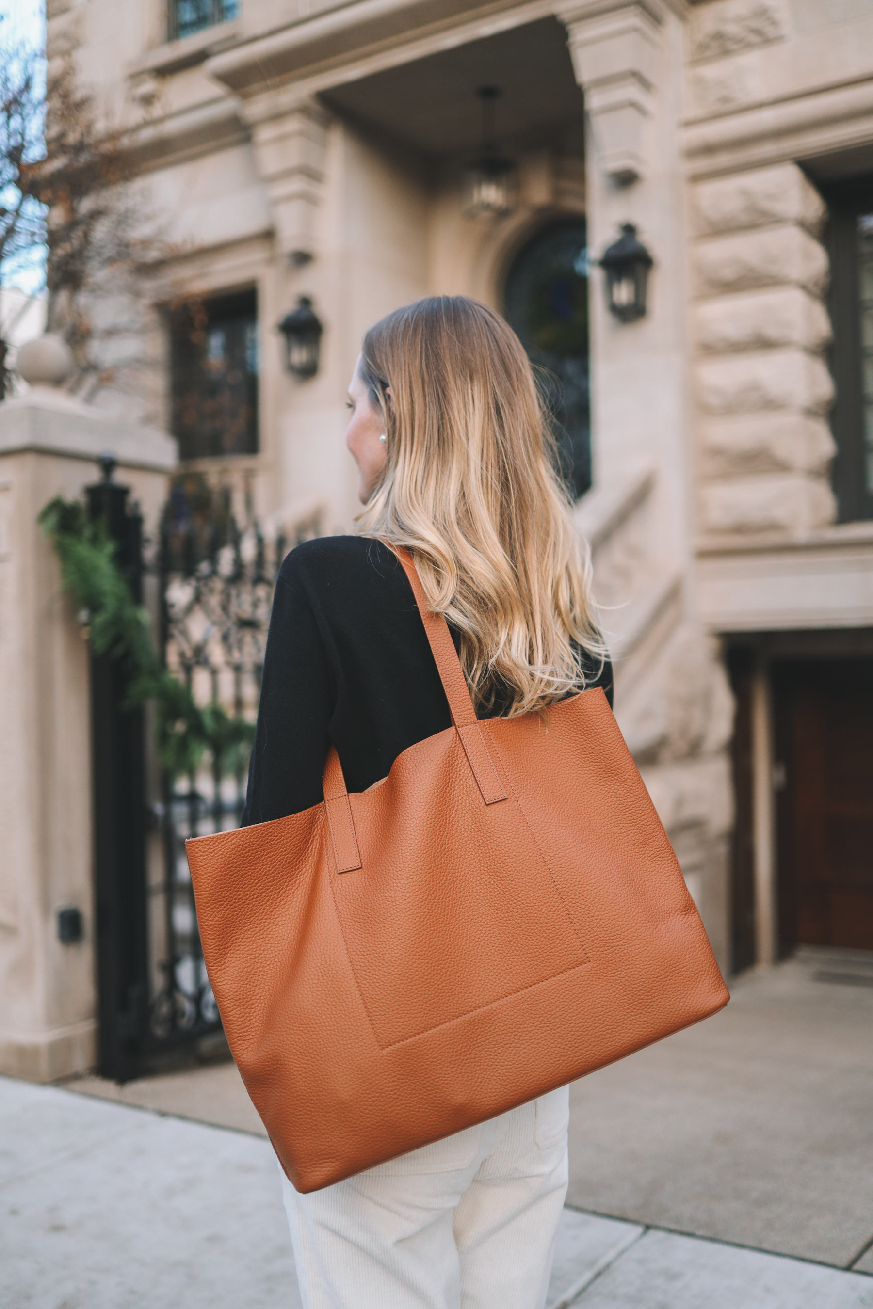 Everlane Soft Day Tote /
