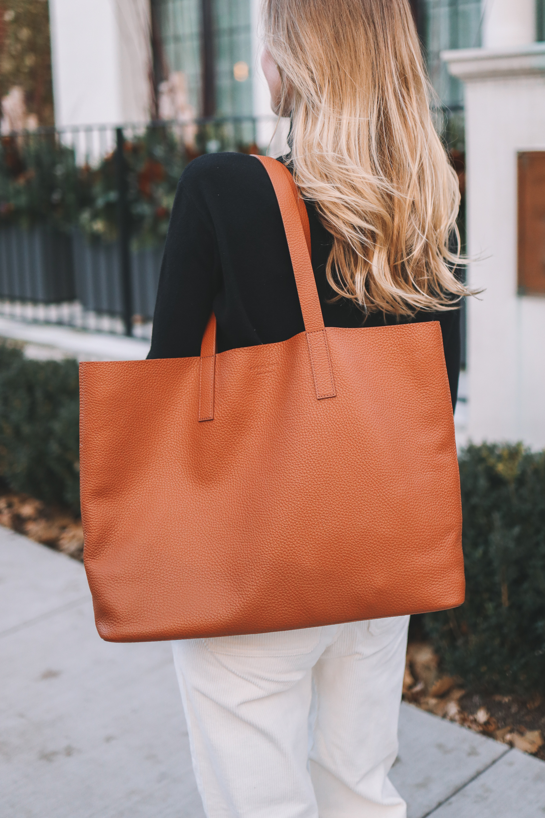 Everlane Soft Day Tote