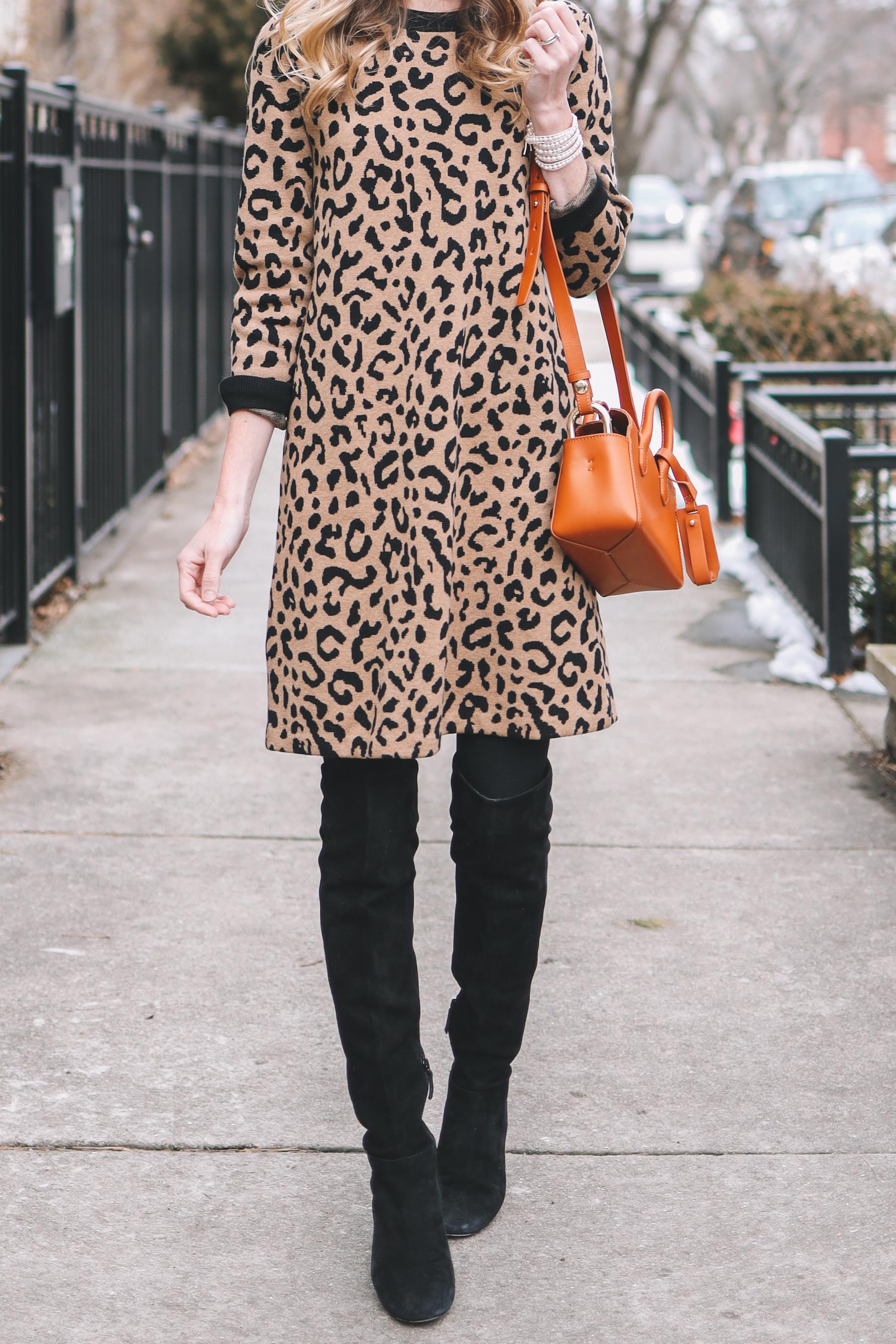 Leopard Sweater Dress on Sale
