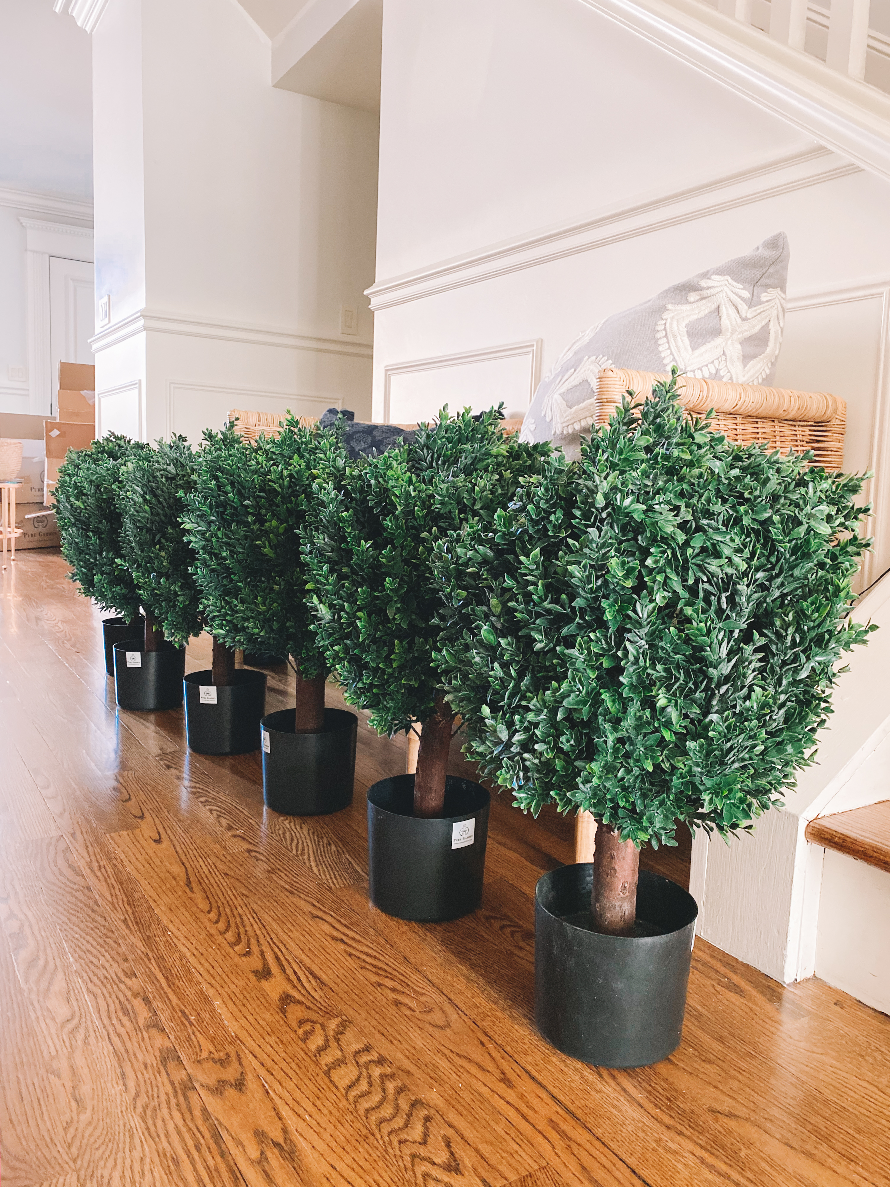 Awesome Faux Boxwoods - Kelly in the City