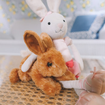 Did You Have a Favorite Stuffed Animal?