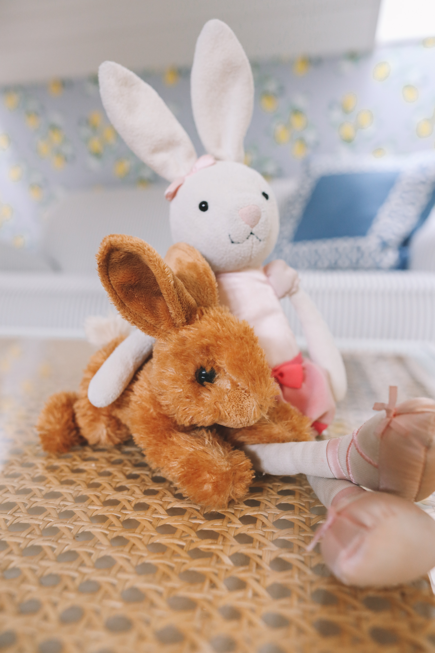 bunnny Favorite Stuffed Animal
