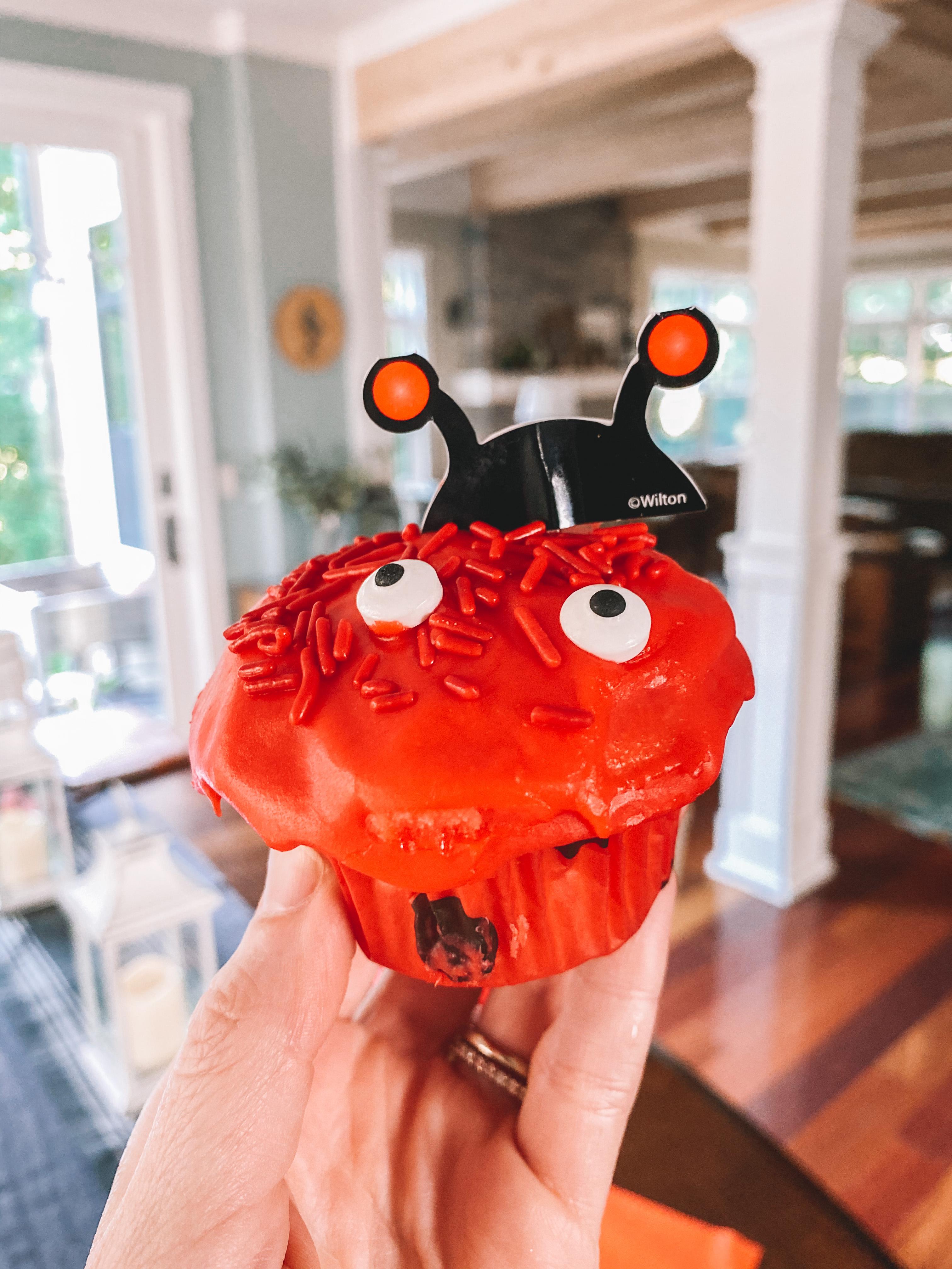 Ladybug Cupcake Kit