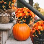 The Best Artificial Pumpkins