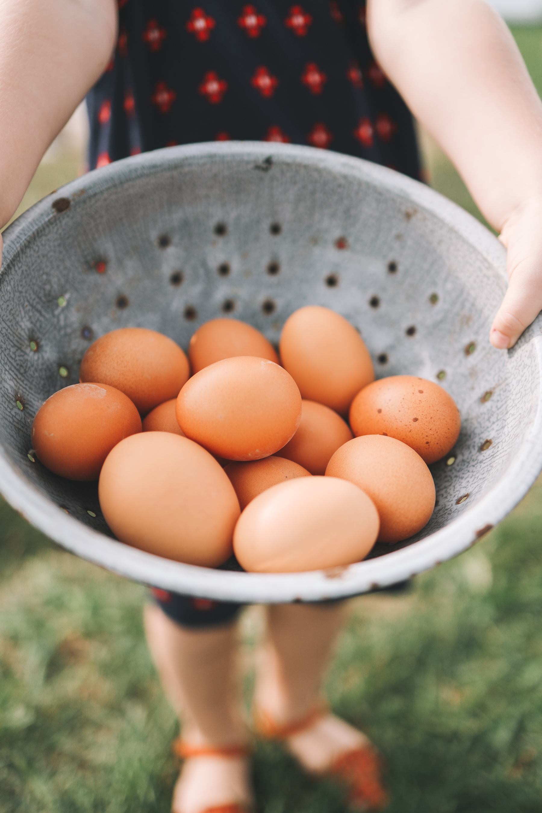 above normal eggs