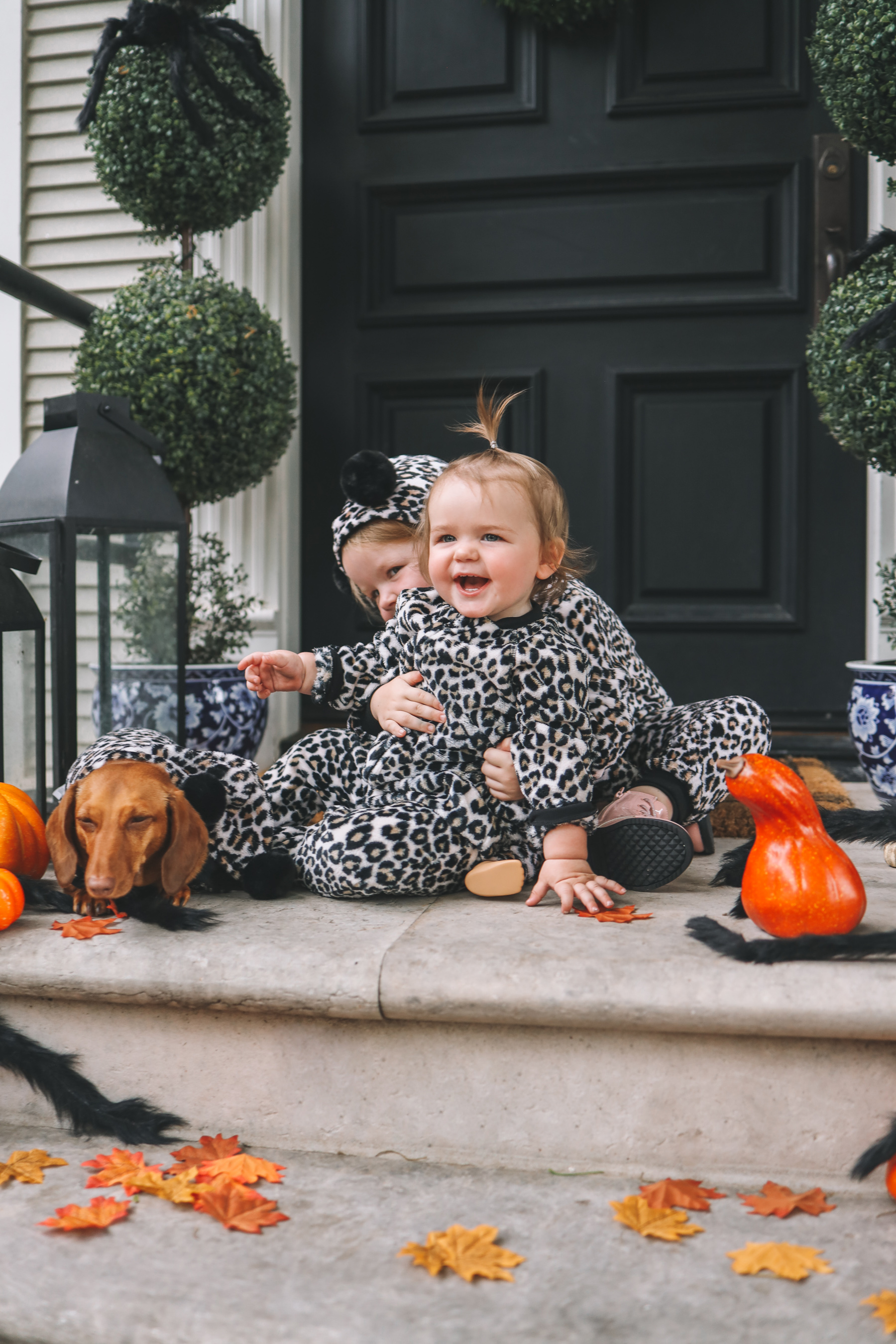 Cute Family Halloween Photos